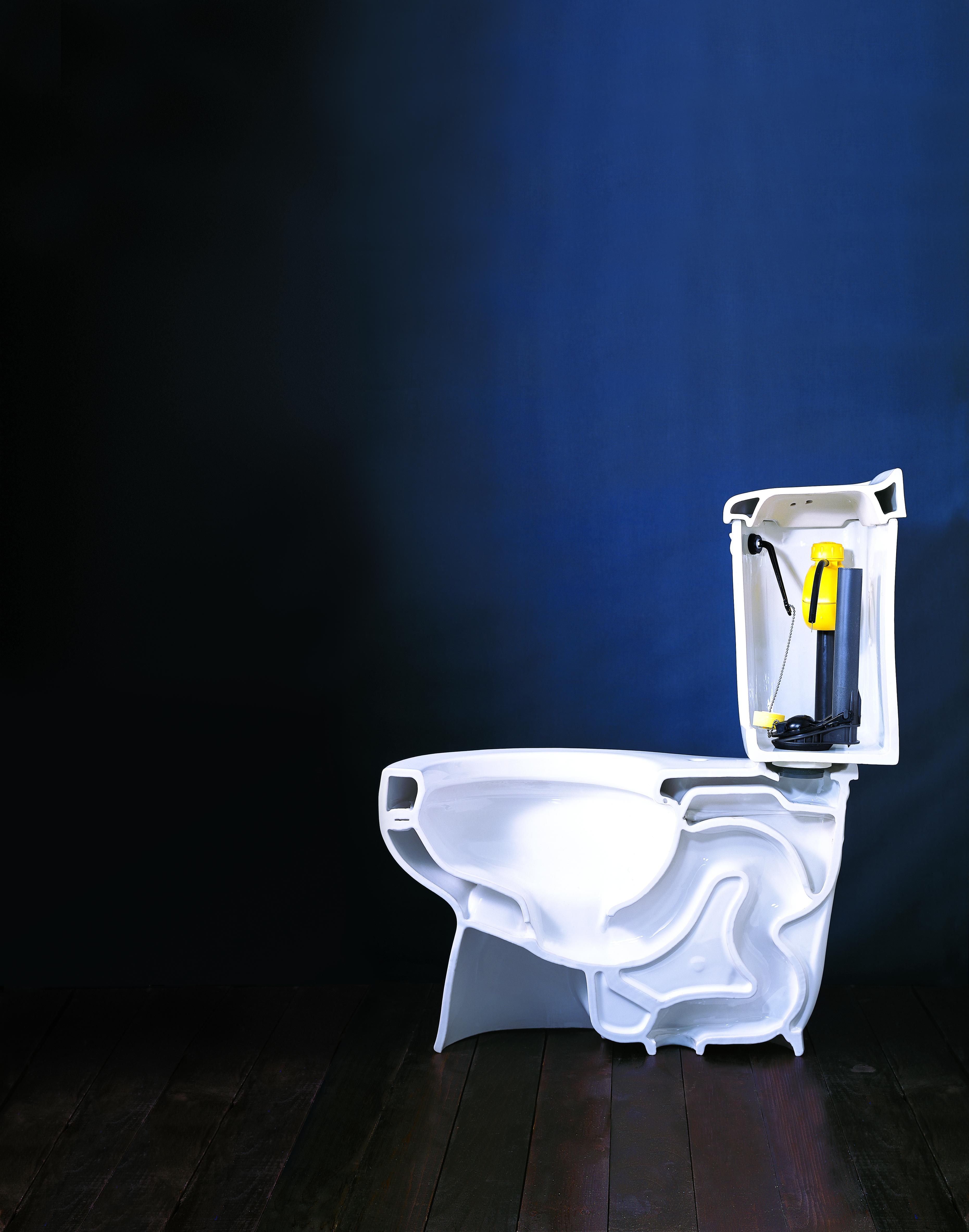 Brand new low flow toilet.