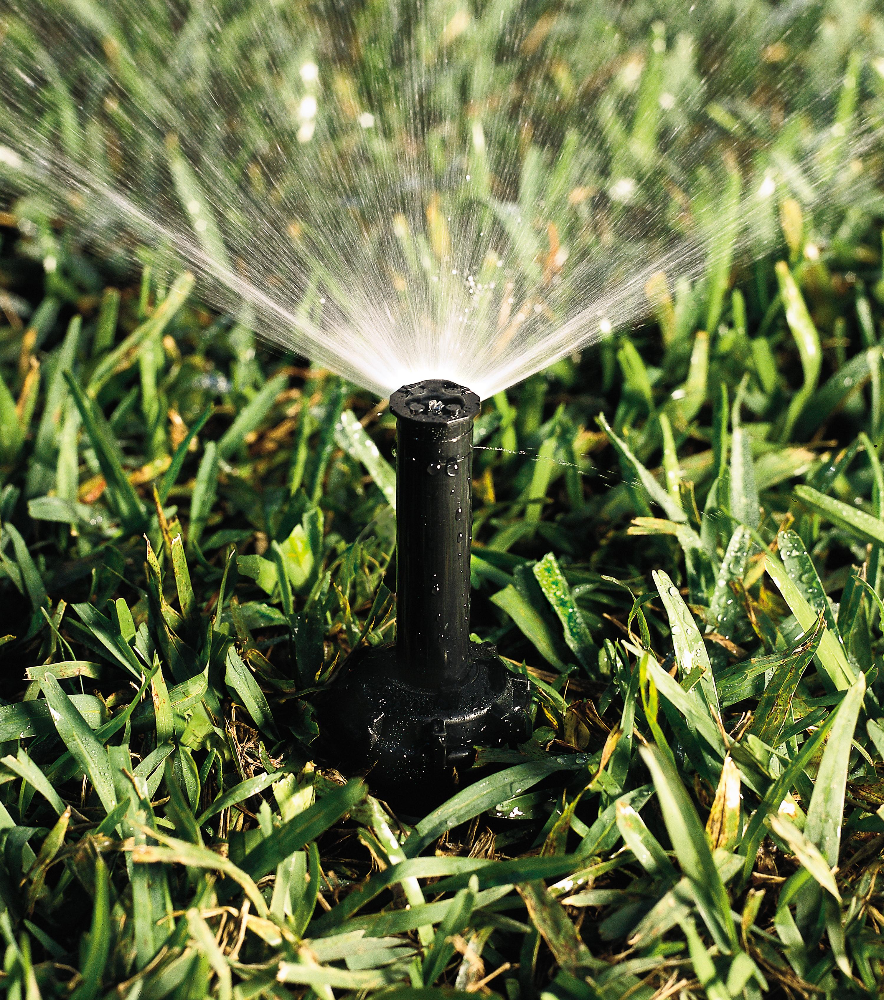 In-Ground Lawn Sprinkler