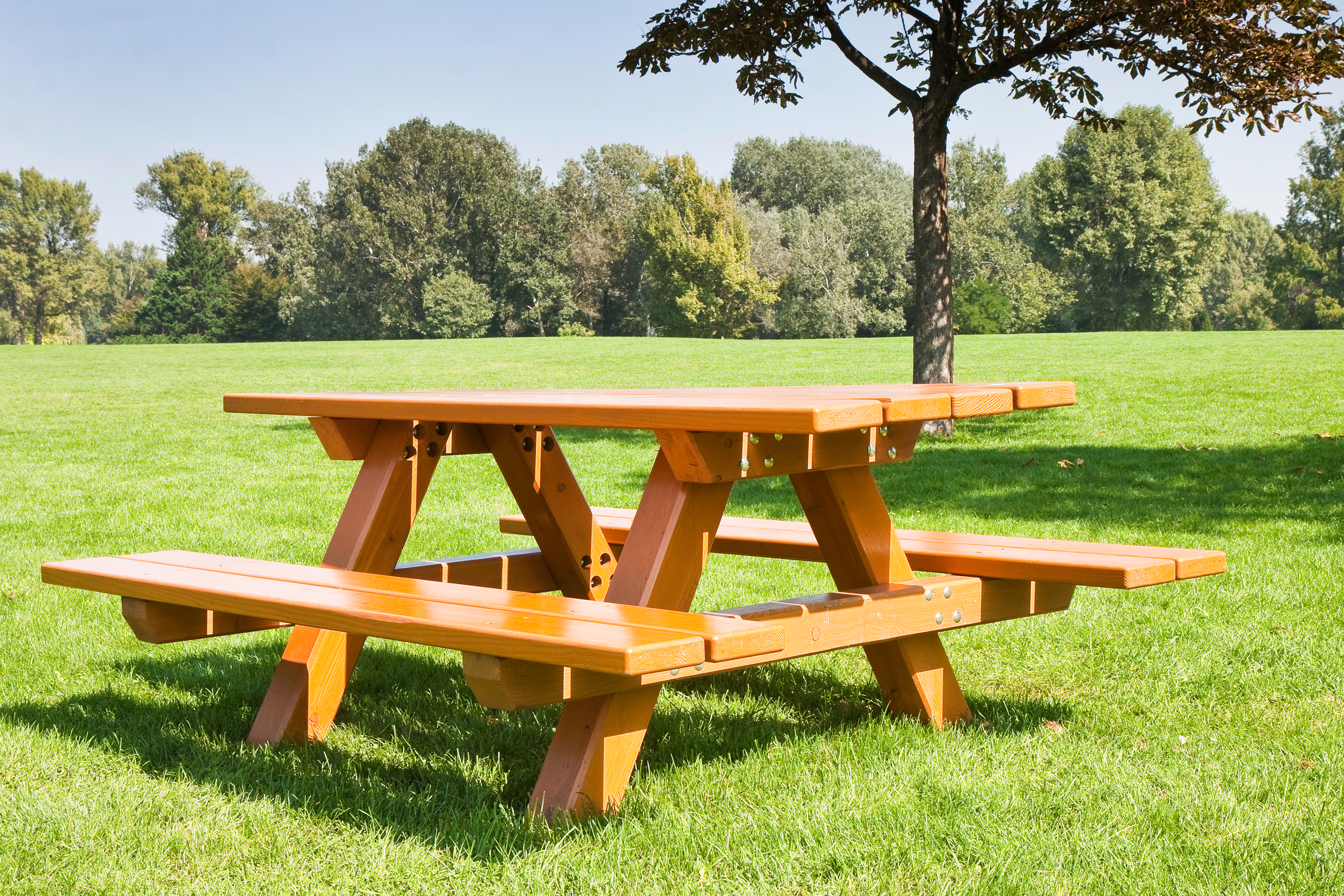 Picnic table in large yard.