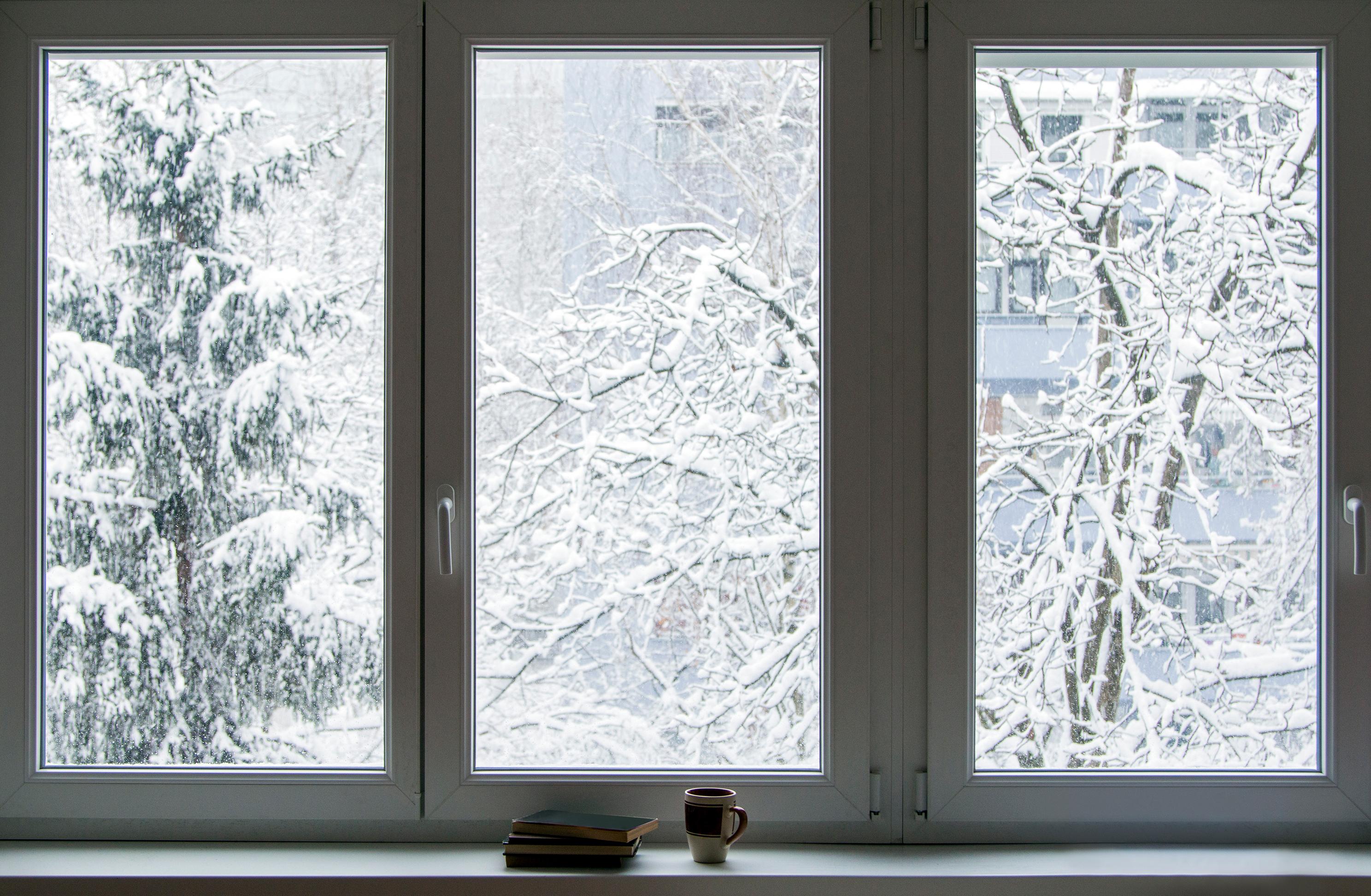 Winter view outside of window.