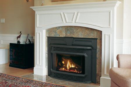 Fireplace insert.