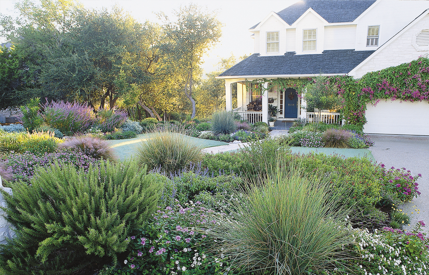 Grassless Front Yard Landscape With Shrubs And Flowers