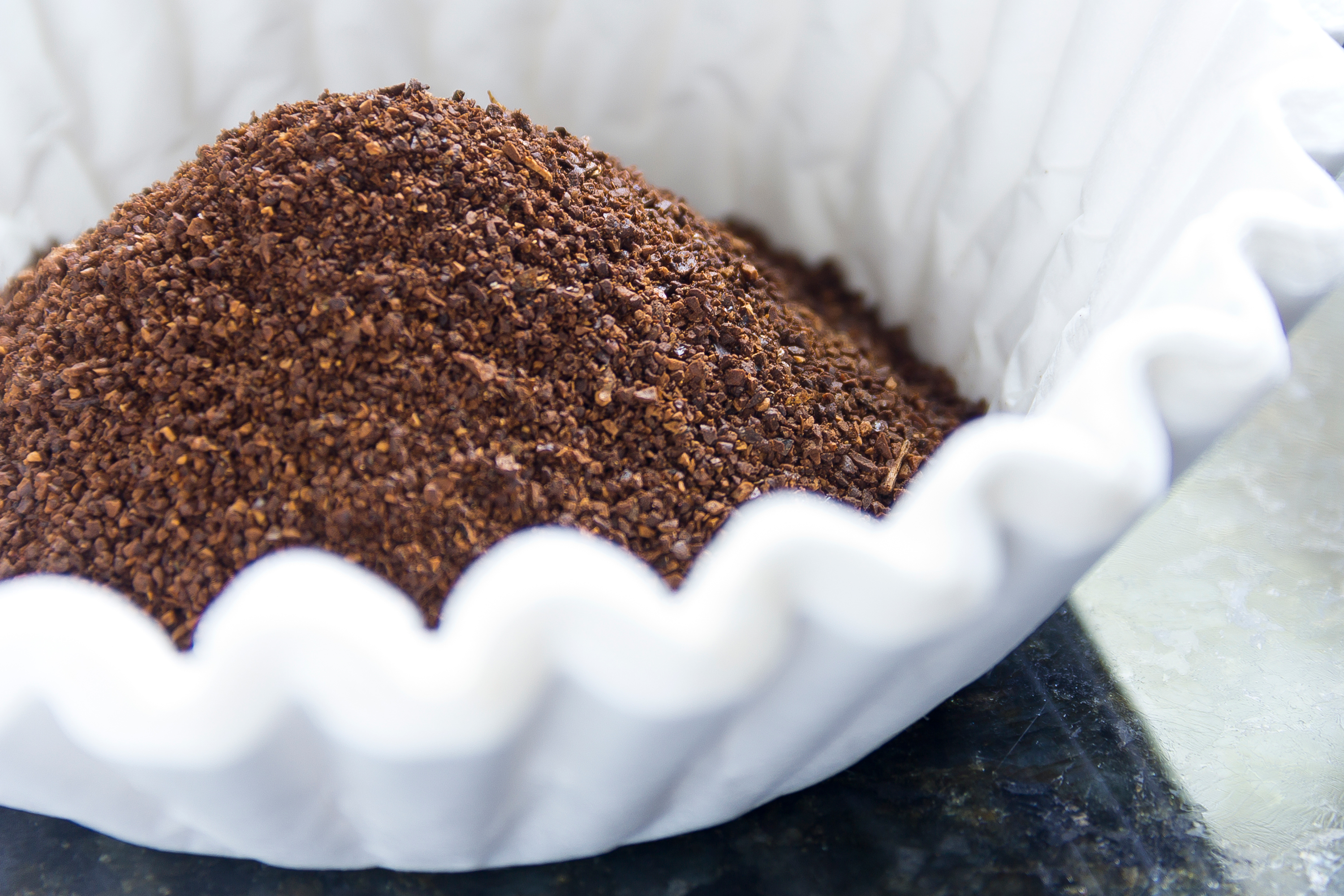 Coffee grounds in a white filter.