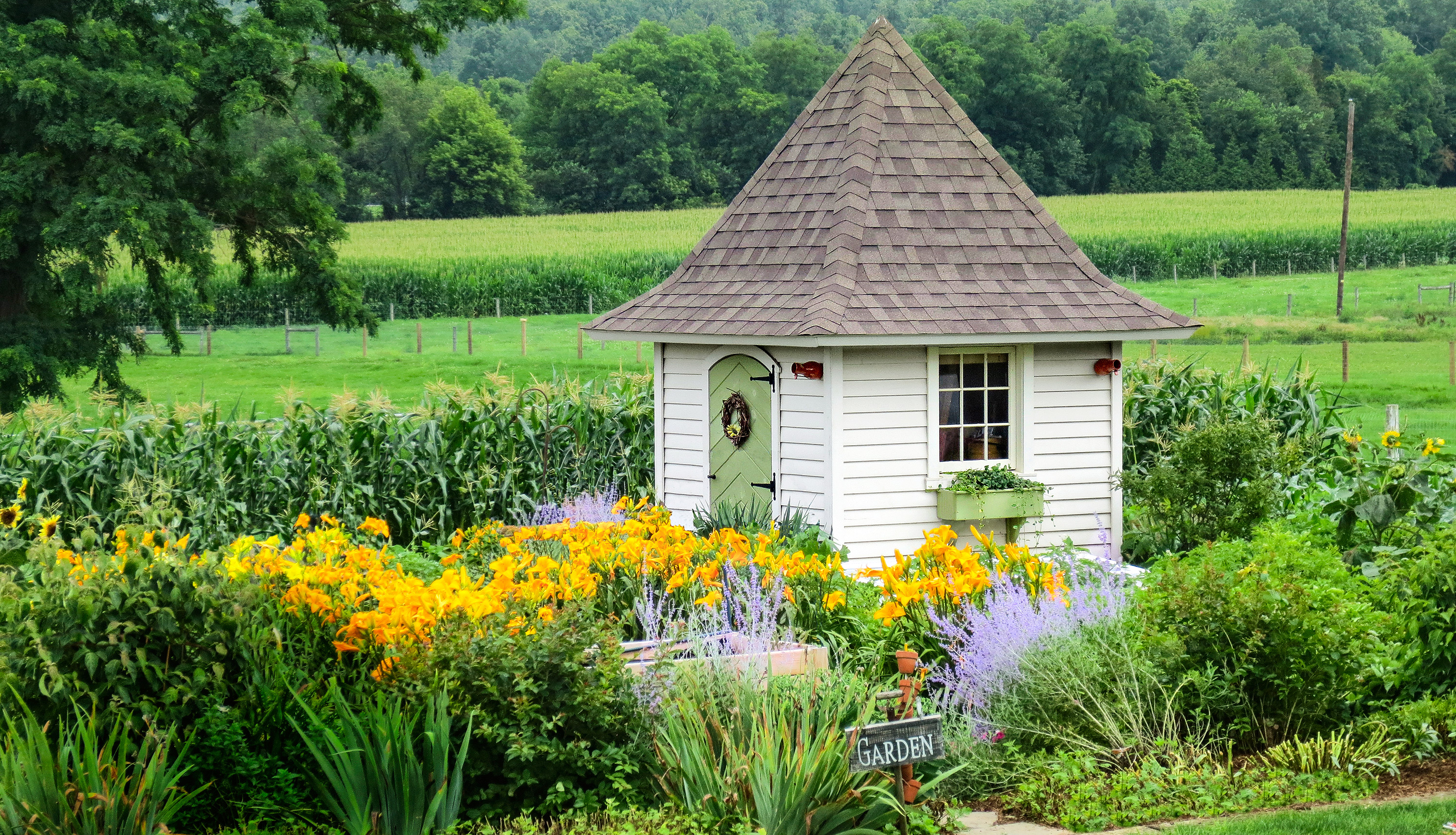 Pointed Roof Garden Shed