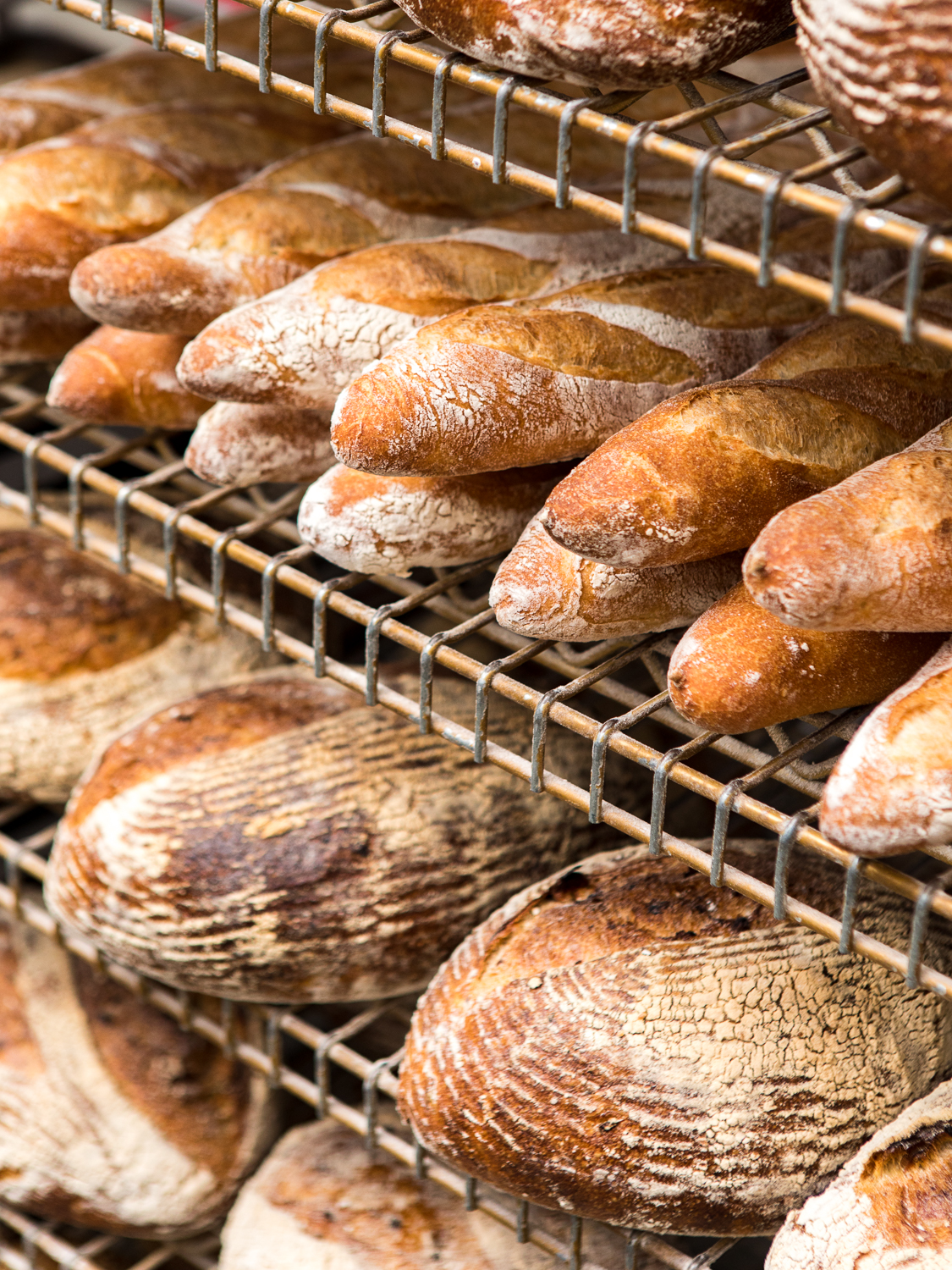 A picture of around a dozen round and baguette-style loaves on wire racks at Grand Central Bakery