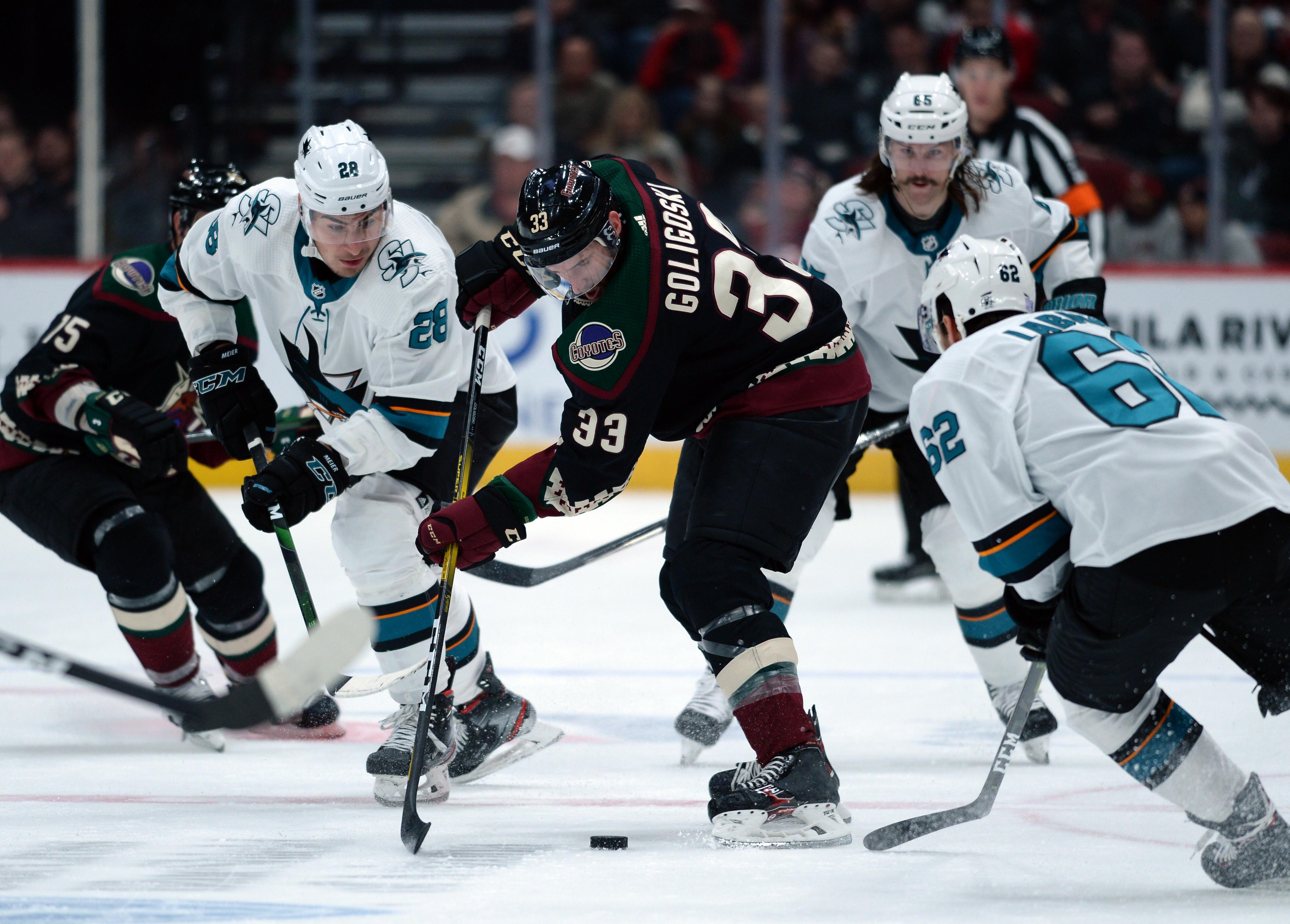 Nov 30, 2019; Glendale, AZ, USA; Arizona Coyotes defenseman Alex Goligoski (33) skates with the puck against the San Jose Sharks during the third period at Gila River Arena.
