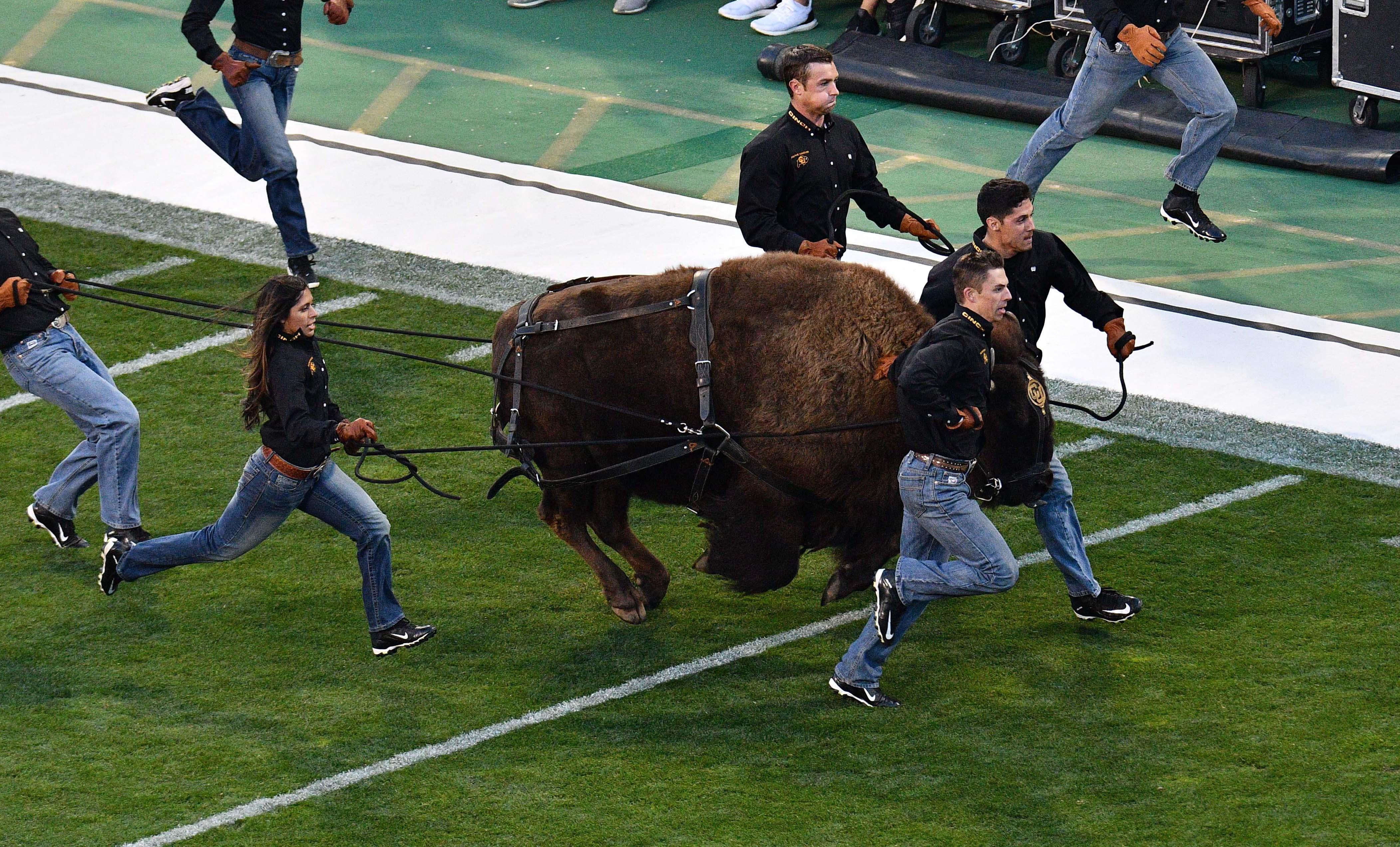NCAA Football: Arizona State at Colorado