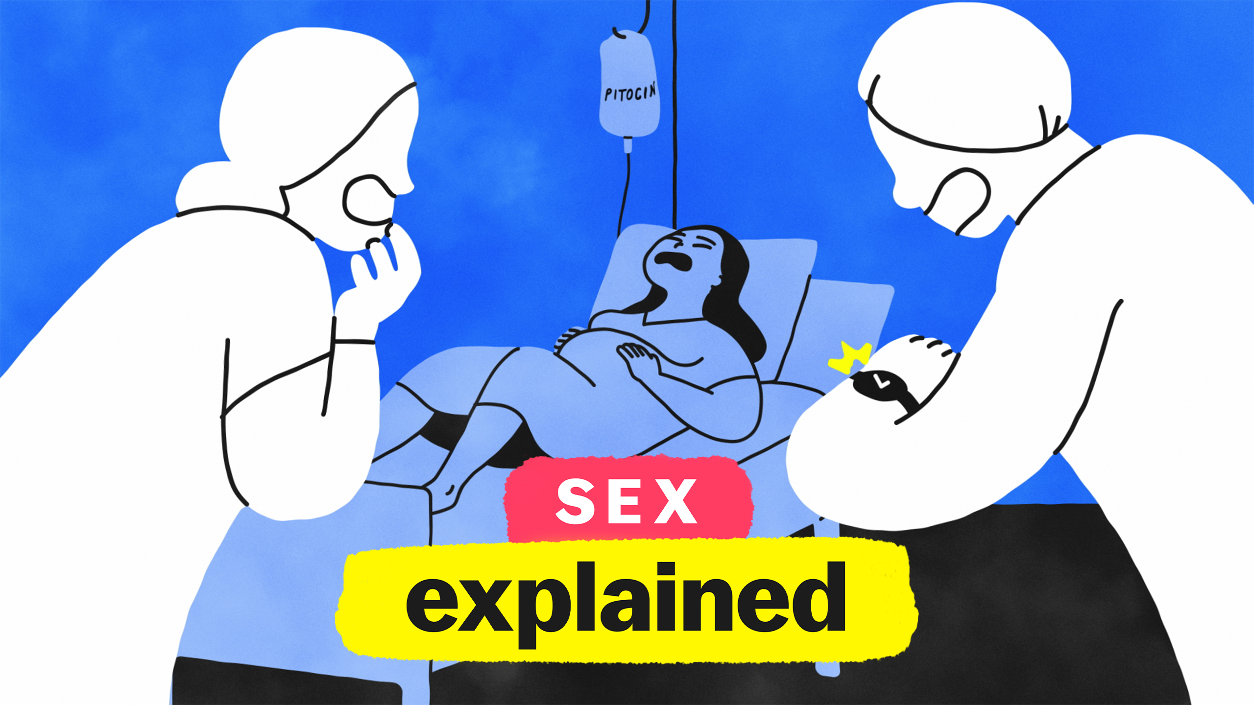 Sex, Explained poster