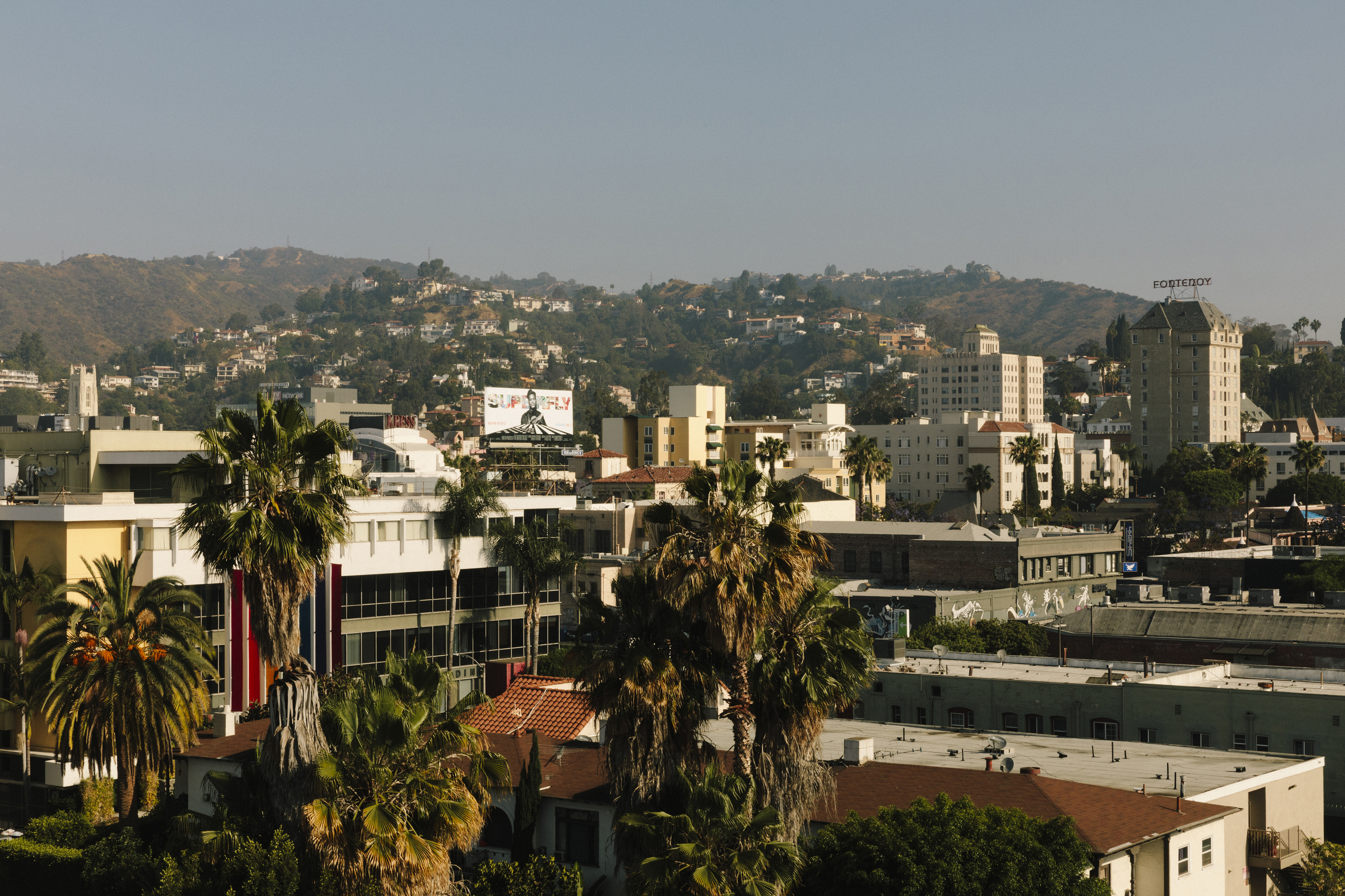 Aerial view of a city scape. Hills dotted with homes in the background and tall buildings and palm trees in the foreground against a hazy blue sky.