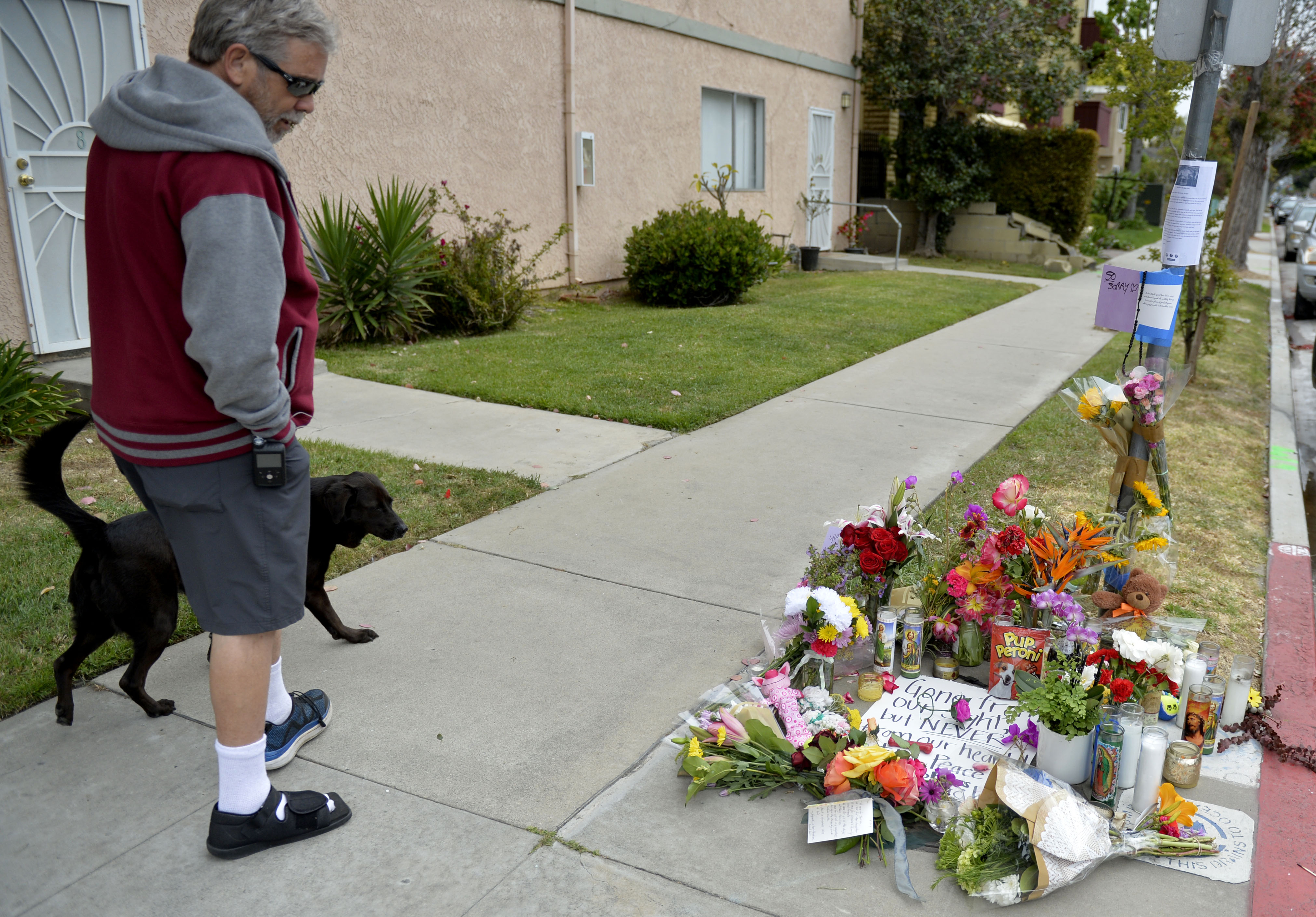 Memorial for car chase victim killed in crash