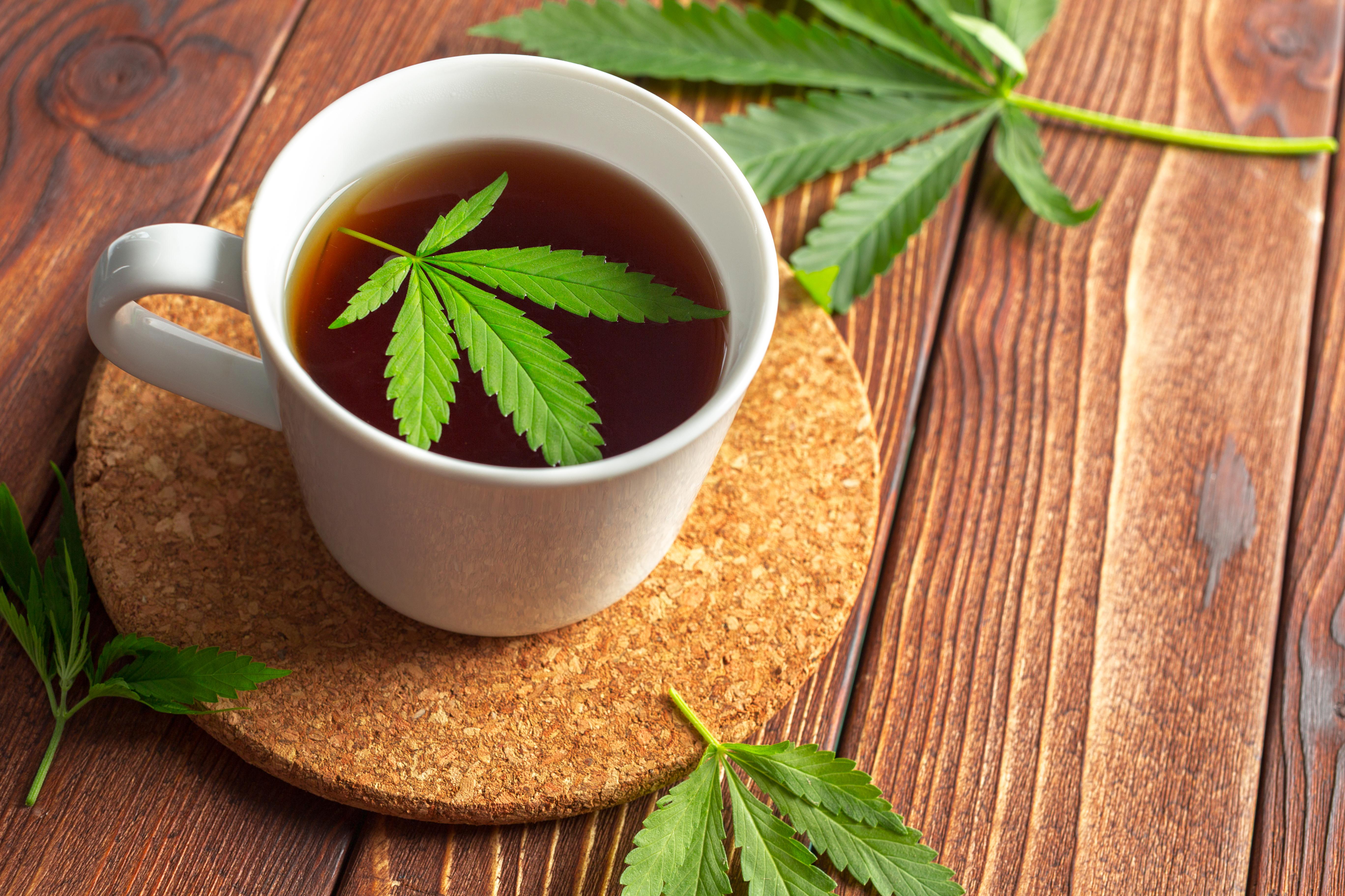 A cannabis leaf in a tea cup.