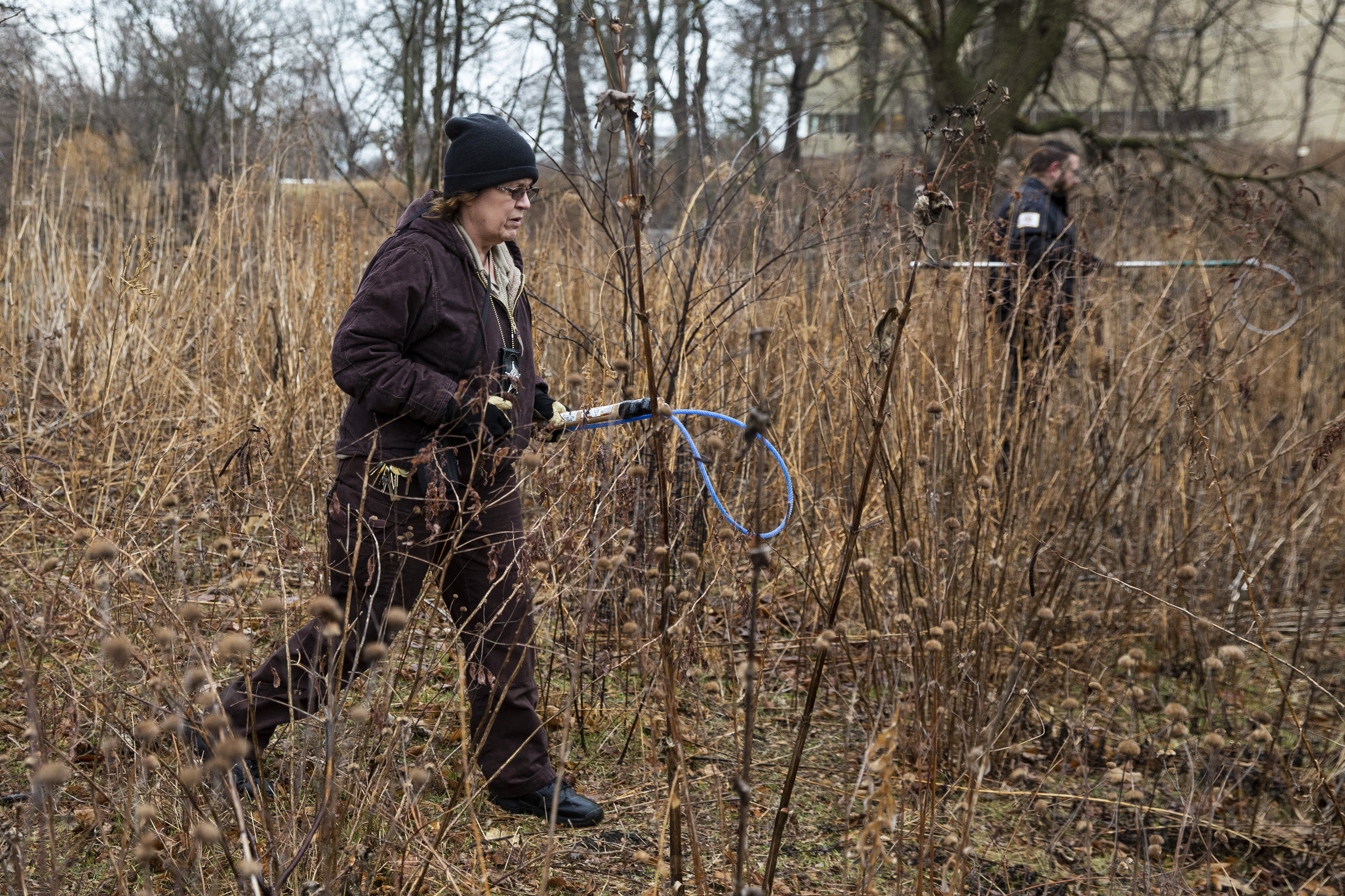 A Chicago Animal Care and Control inspector, (foreground) and warden from Cook County Animal Control (rear) fan out around the Peggy Notebaert Nature Museum in Lincoln Park in the search for a coyote. Jan. 9, 2020.
