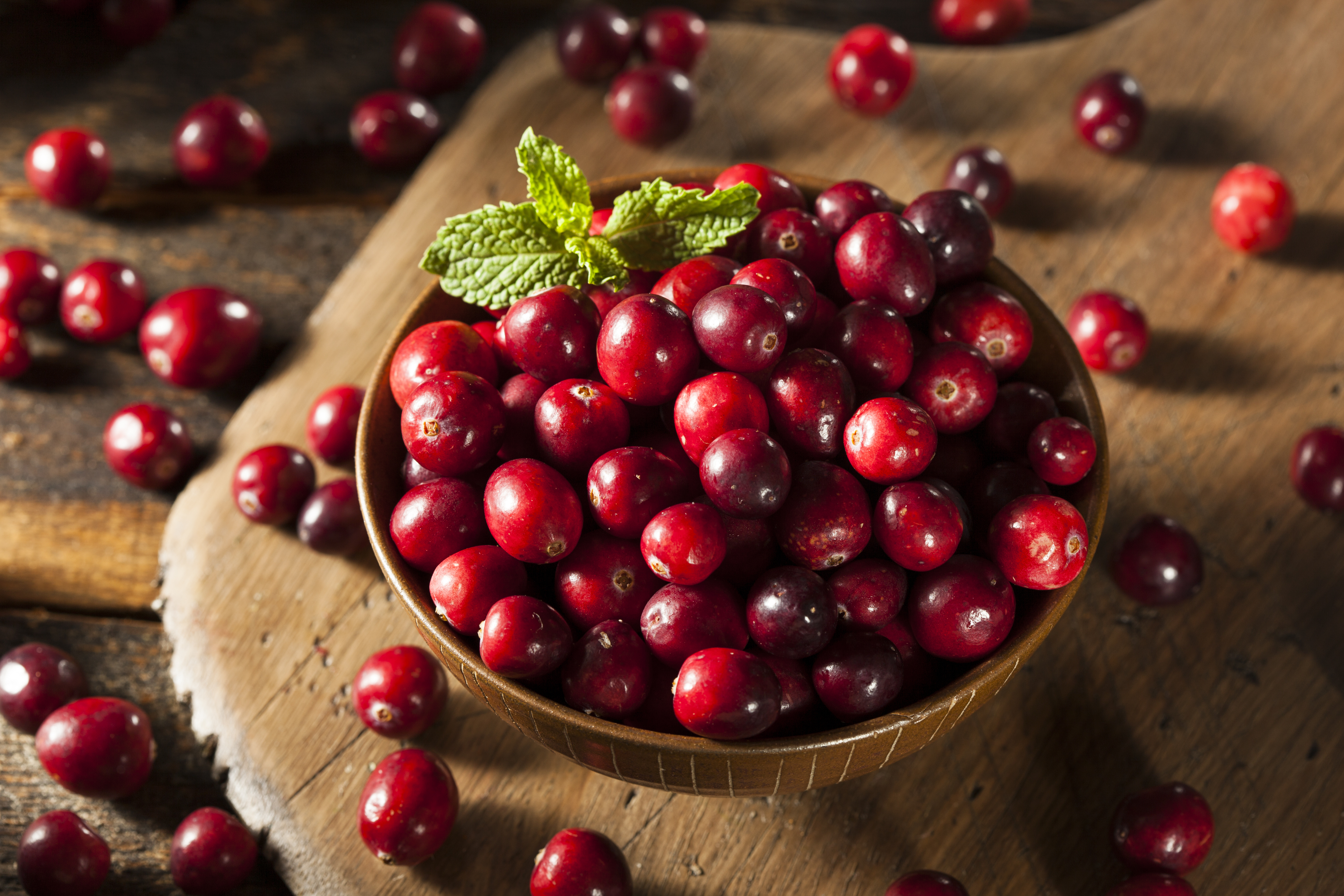 Cranberries get their crimson color from anthocyanins, one of many plant compounds beneficial to health.