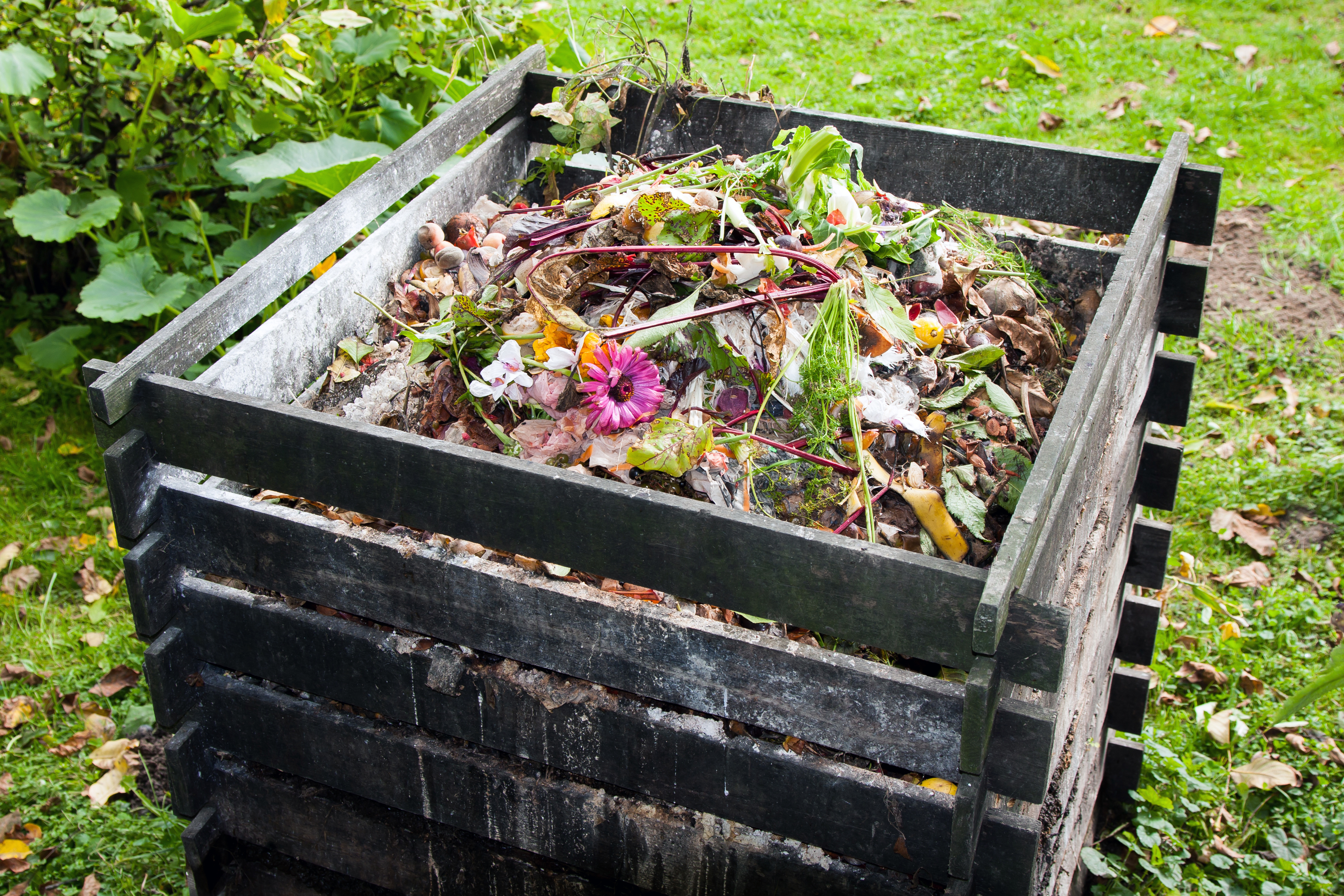 A wood bin nearly full with dirt and food scraps.