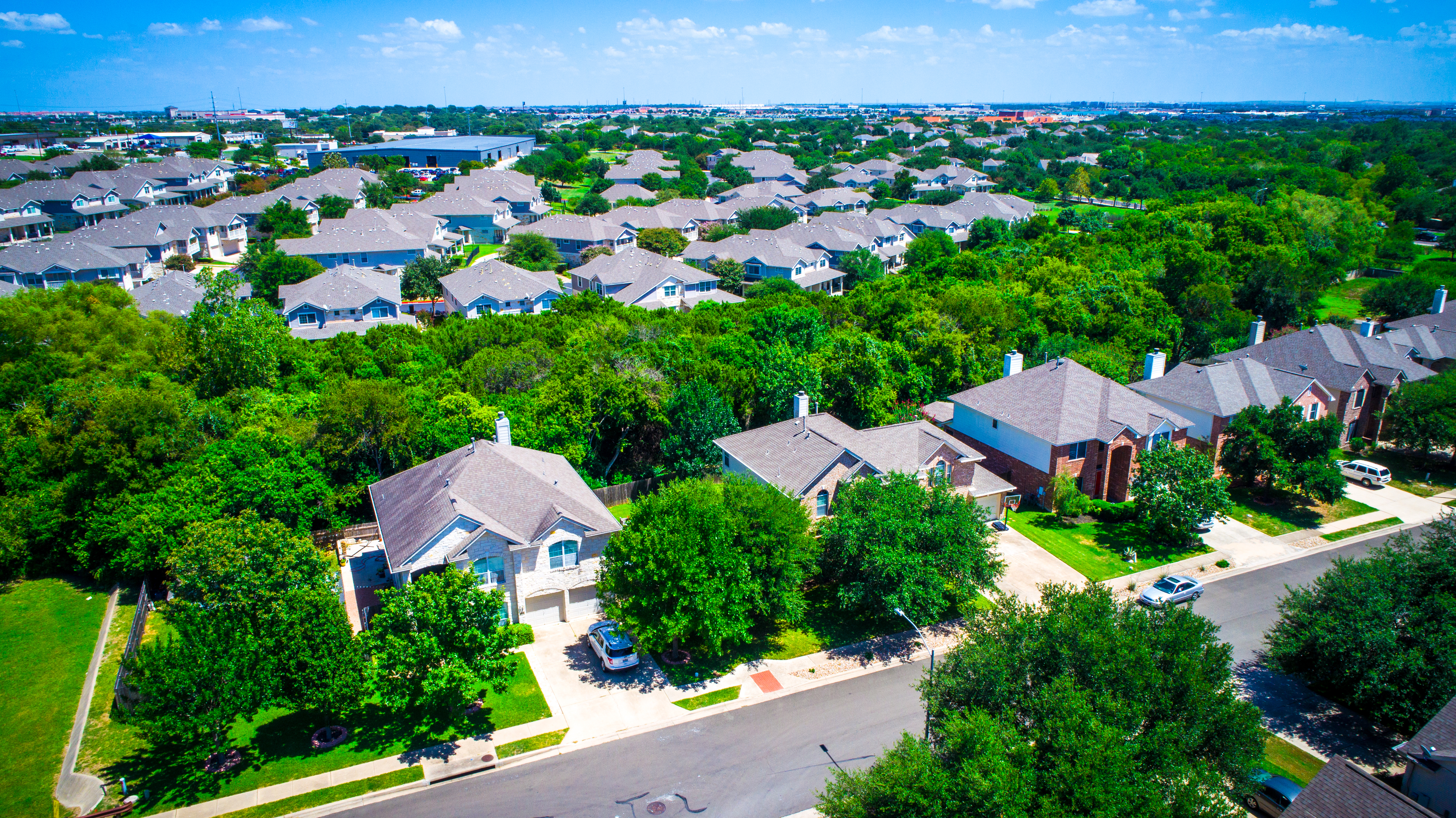 Aerial photo of similar-looking, similar sized suburban houses in rows with trees in between.