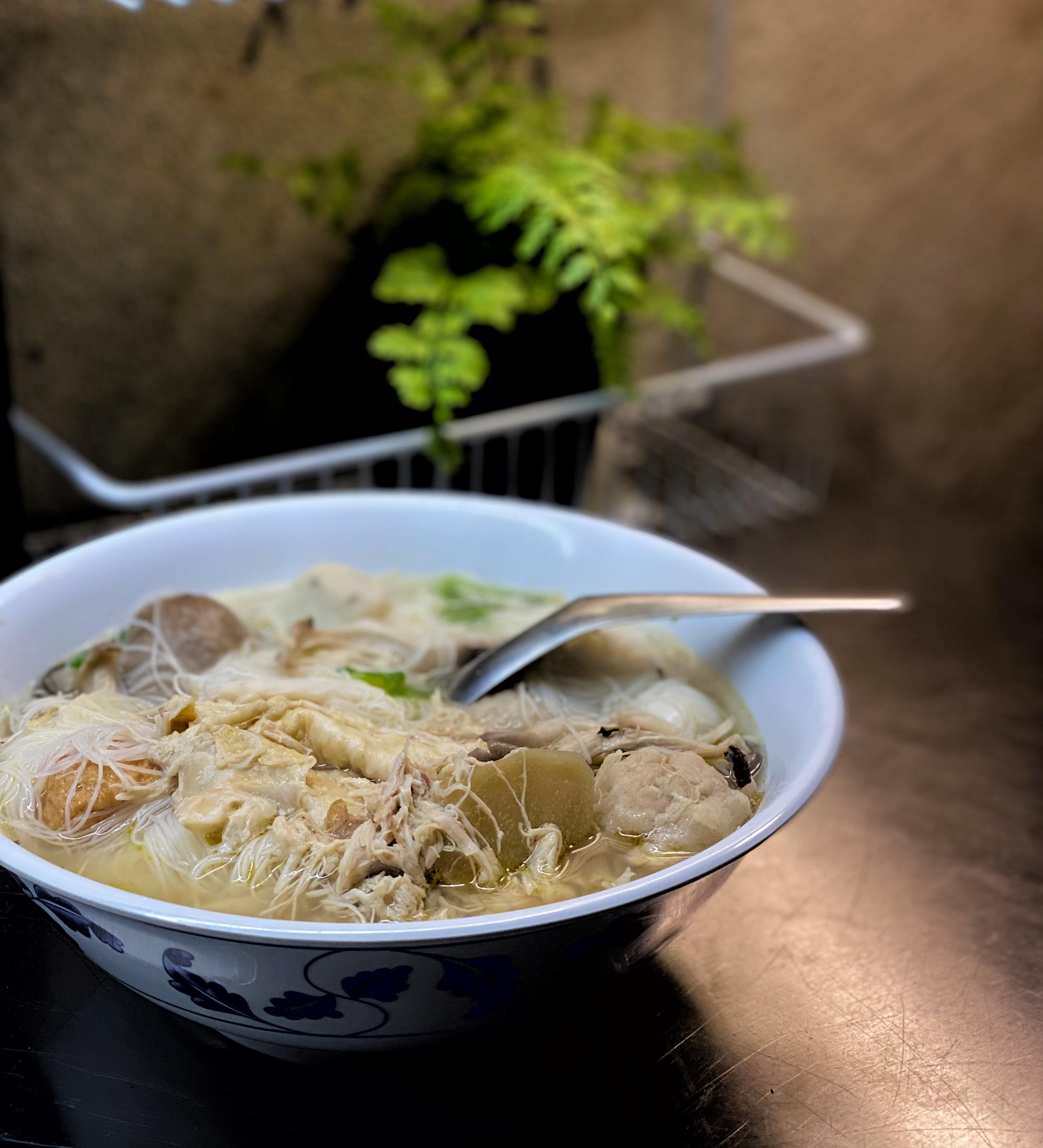 A picture of a bowl of soup, filled with thin rice noodles tangled in hunks of chicken, meatballs, and quail eggs. The bowl is sitting with a spoon in it, next to a potted fern.