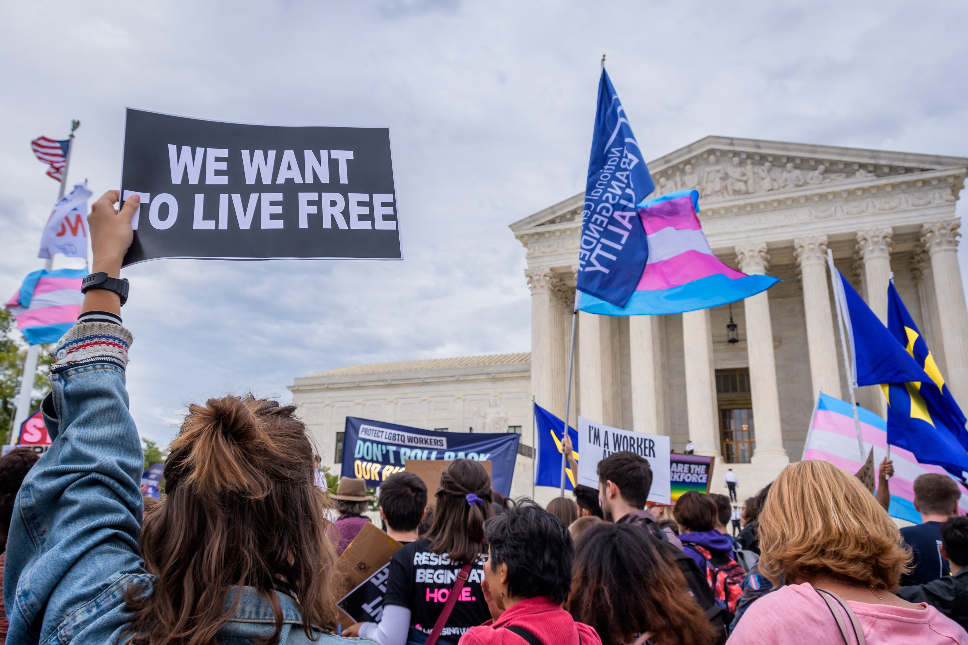 """Rally participant holding a sign that reads, """"We want to live free,"""" outside the Supreme Court building."""