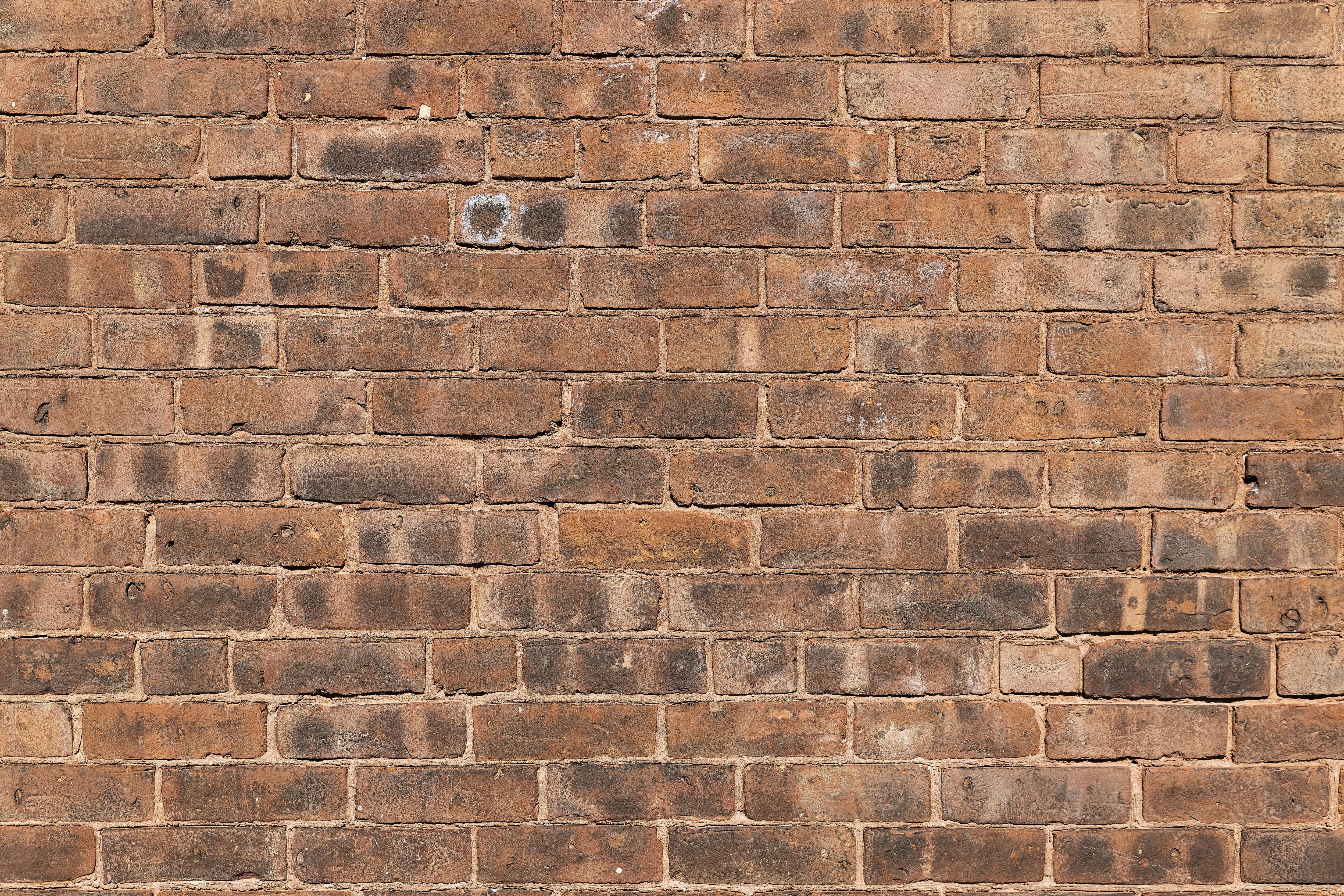 Brick wall detail...