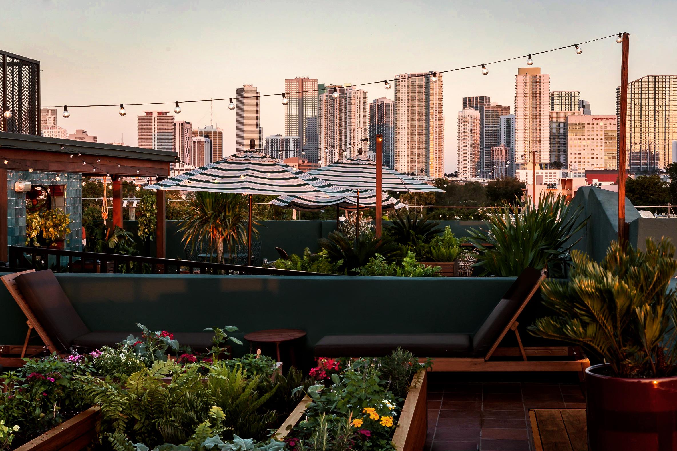 Little Havana Has a Lush New Tropical Rooftop Bar