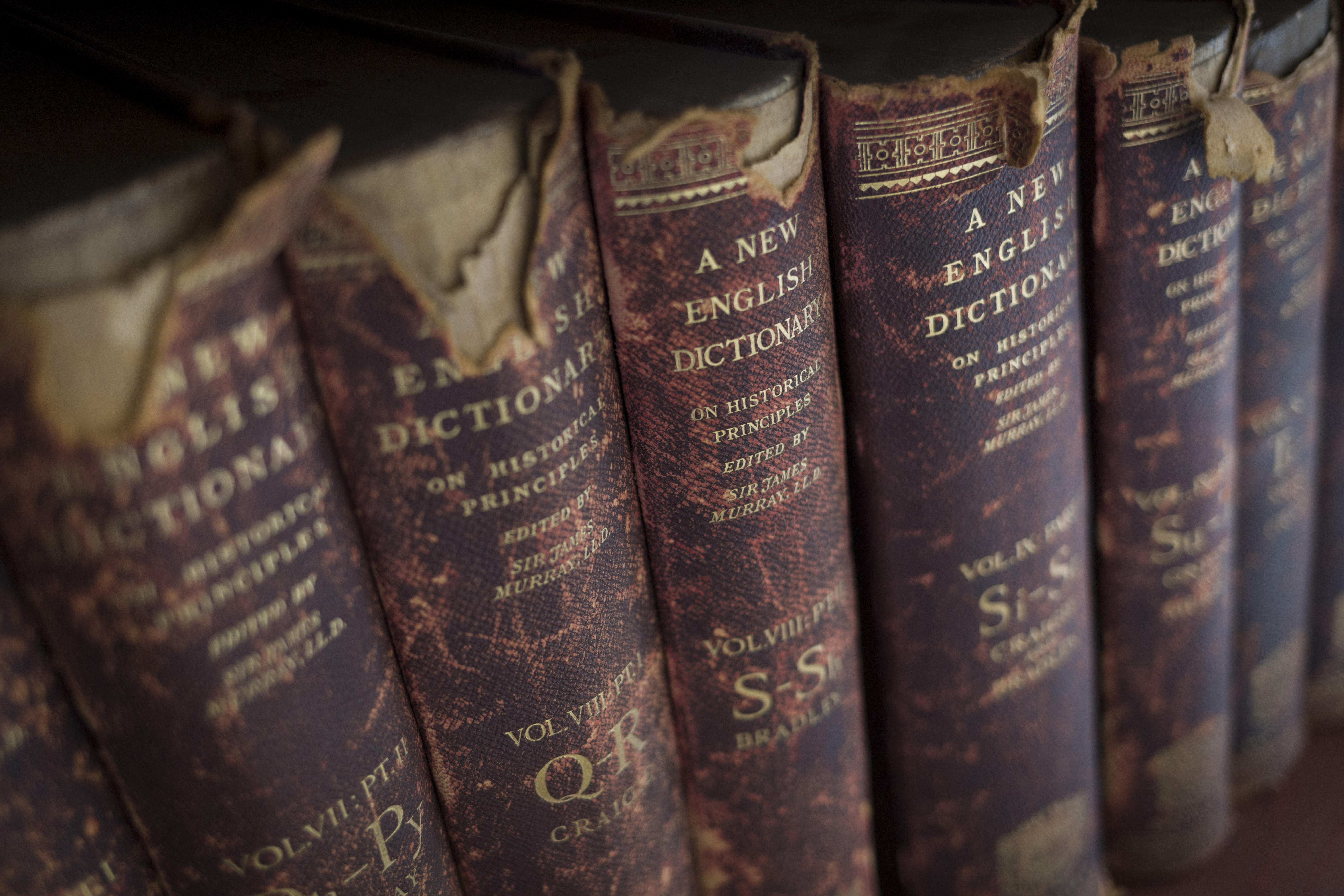 The spines of several antique books standing on a shelf.