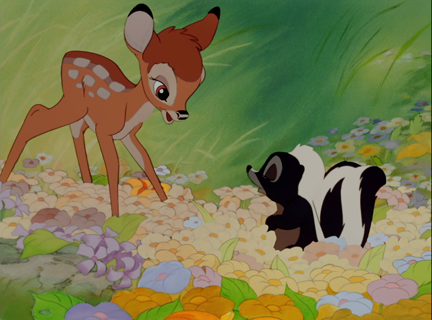 bambi looks at flower in a field of wildflowers