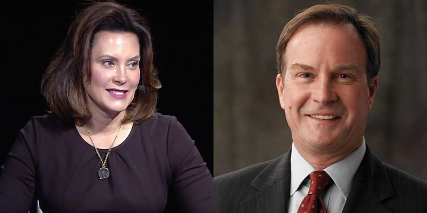 Democrat Gretchen Whitmer will face Republican Bill Schuette on November 6 in the race to become Michigan's next governor.