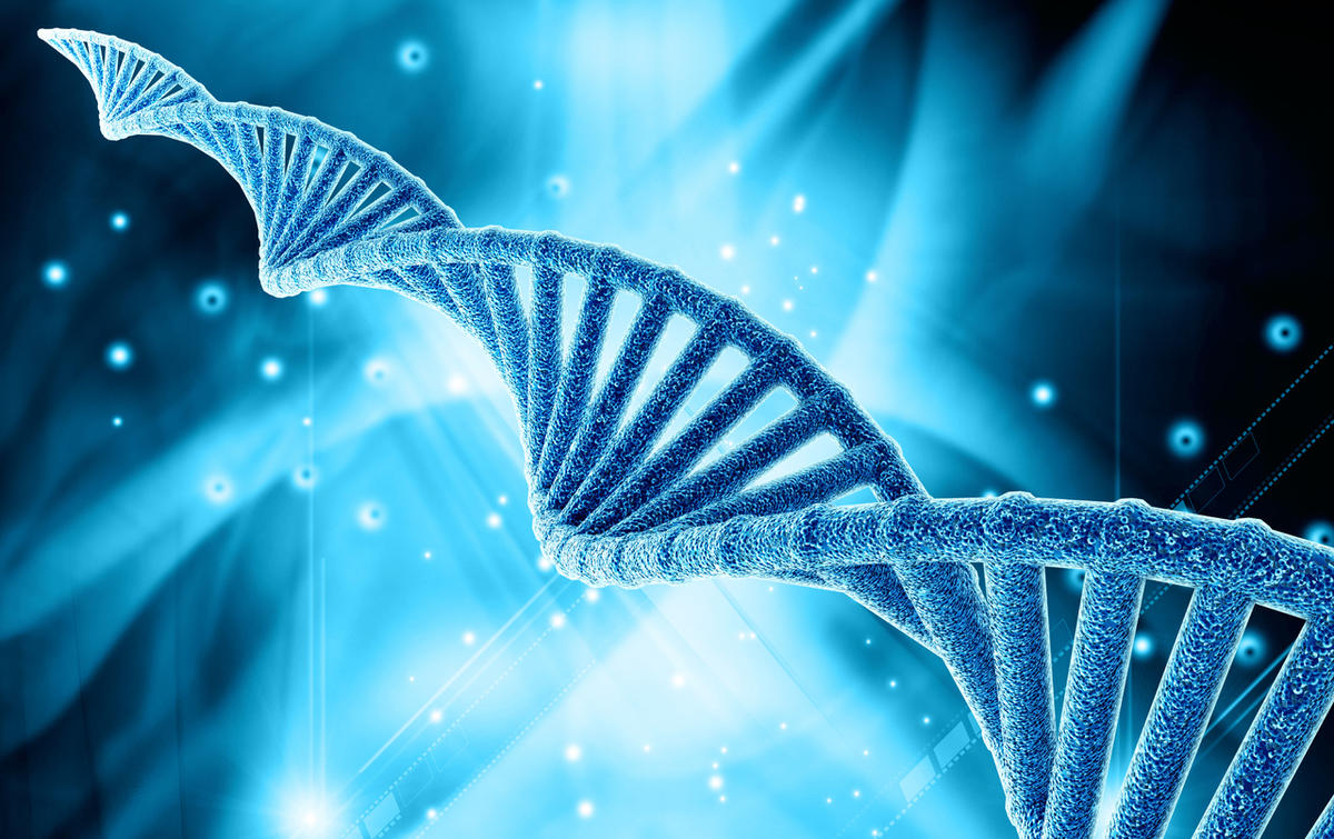 Learning more about your genetic makeup could be the key to losing weight more effectively—according to Vitagene DNA.