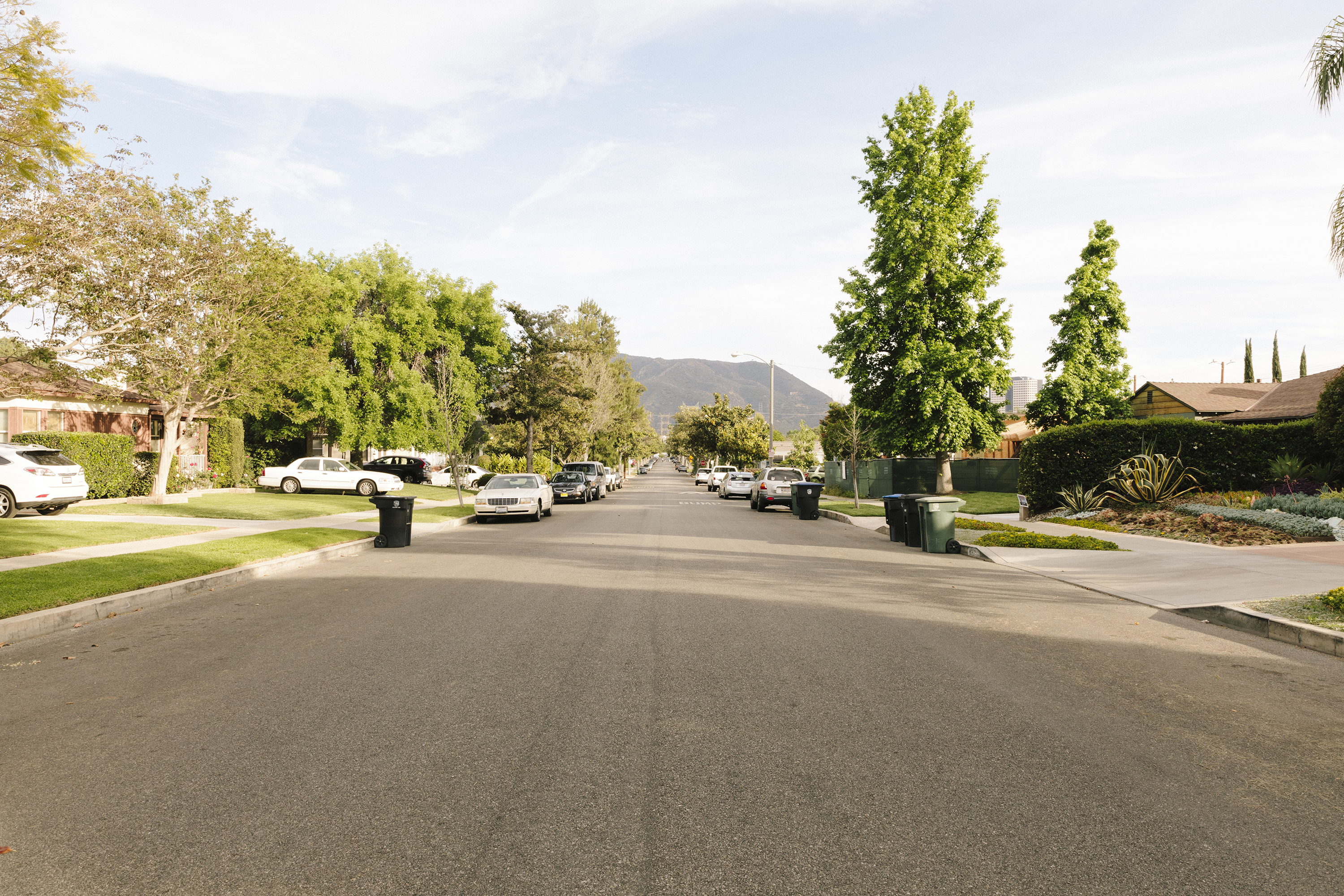 A street in a typical LA neighborhood, lined with trees, cars and garbage cans in the street.
