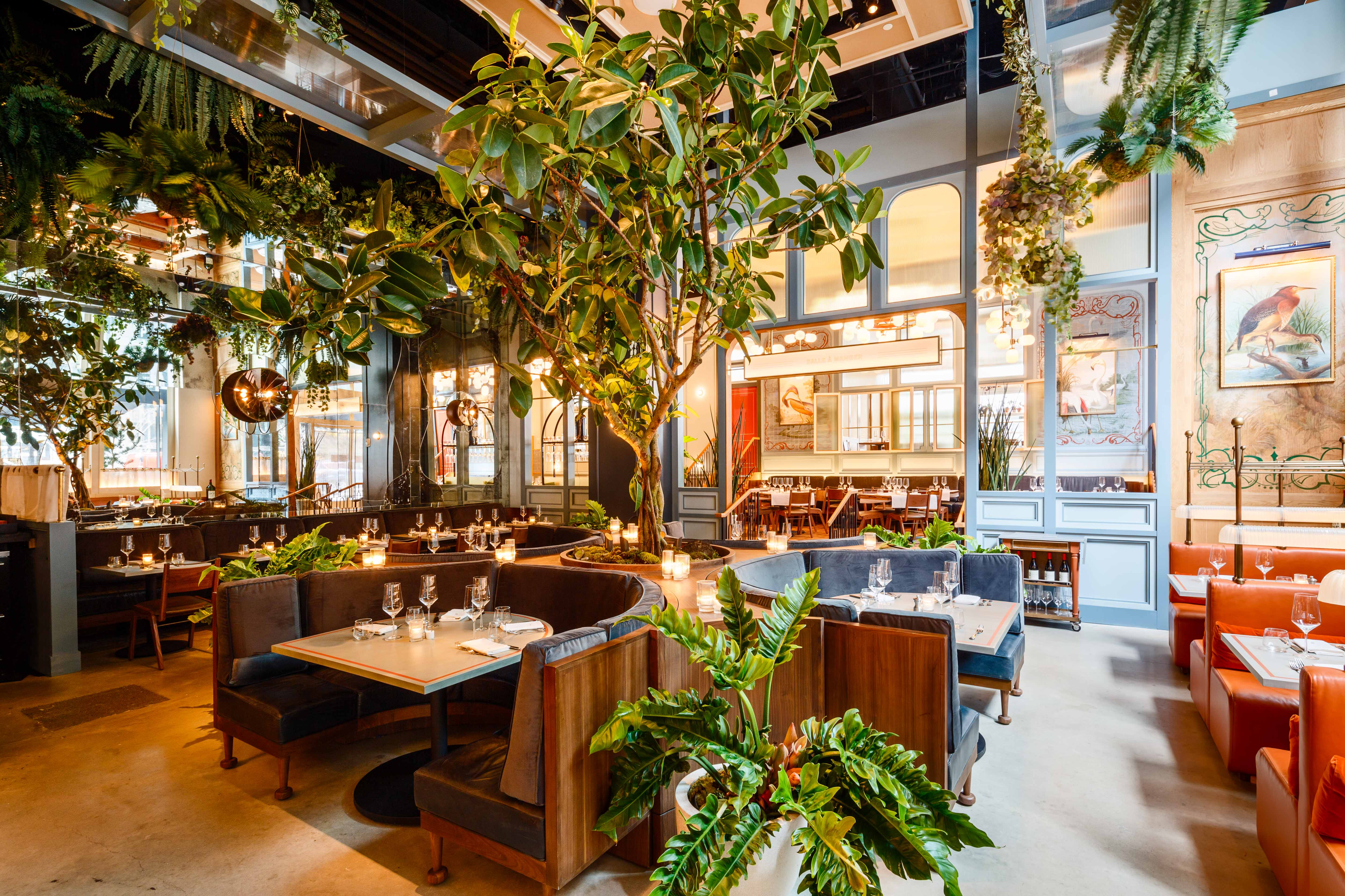 A tree grows behind the banquettes inside Quality Bistro in NYC,