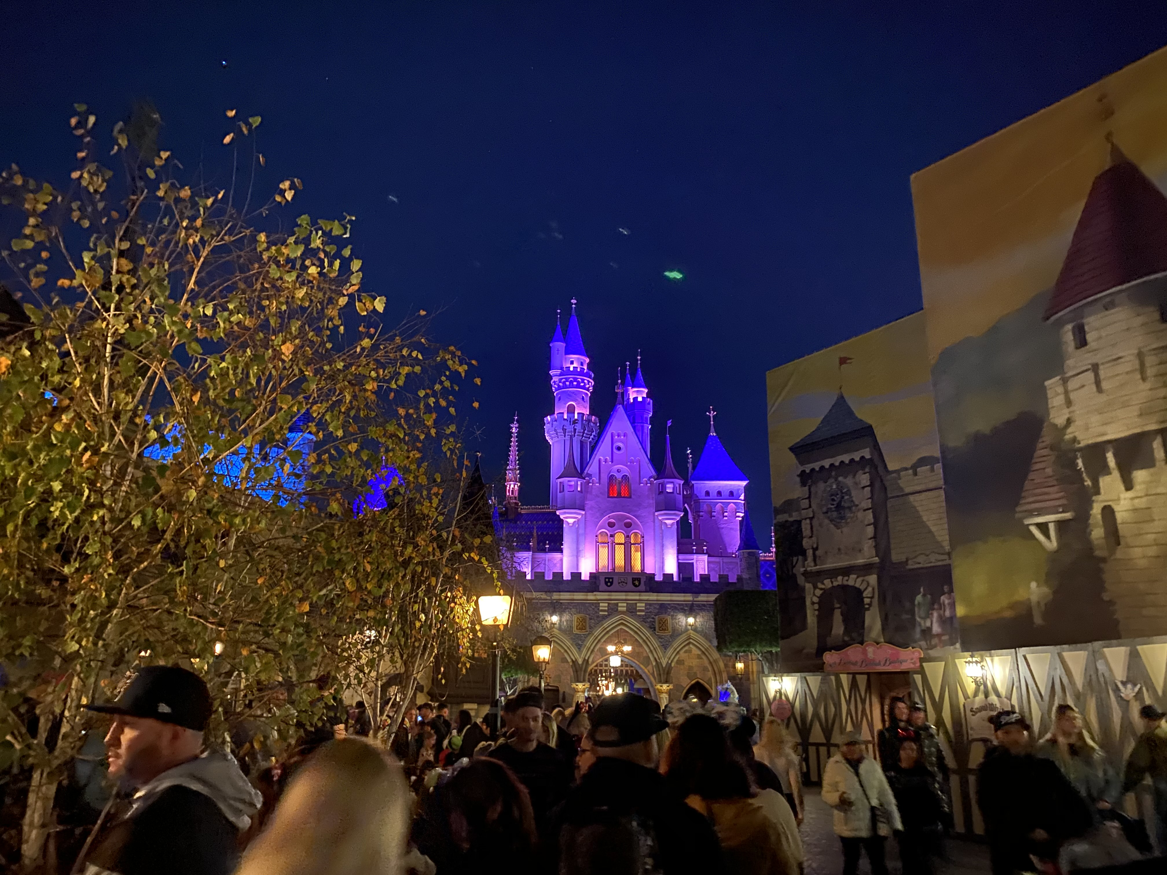 I decided to experience plenty of rides for my first visit to Disneyland. I wanted to maximize my experience as much as I could so I sampled a slew of rides to see which ones stood out.