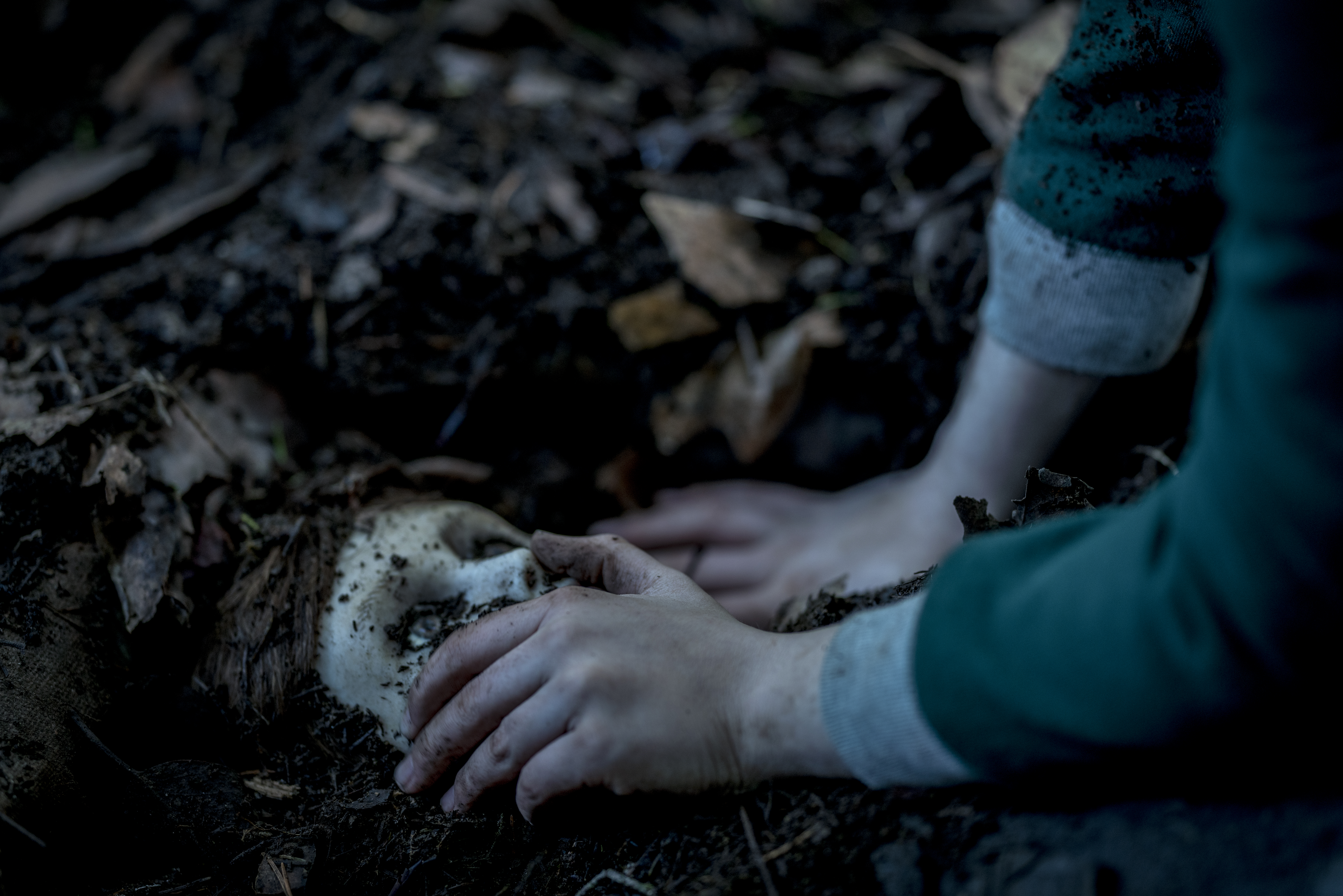 Grubby hands uncover the dirty white face of an evil porcelain doll buried in the ground.