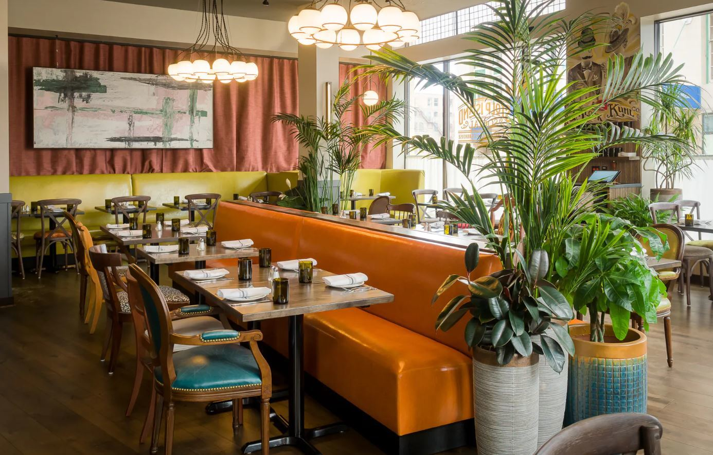 A bright and verdant dining room with colored booths, wooden chairs, and hanging art.