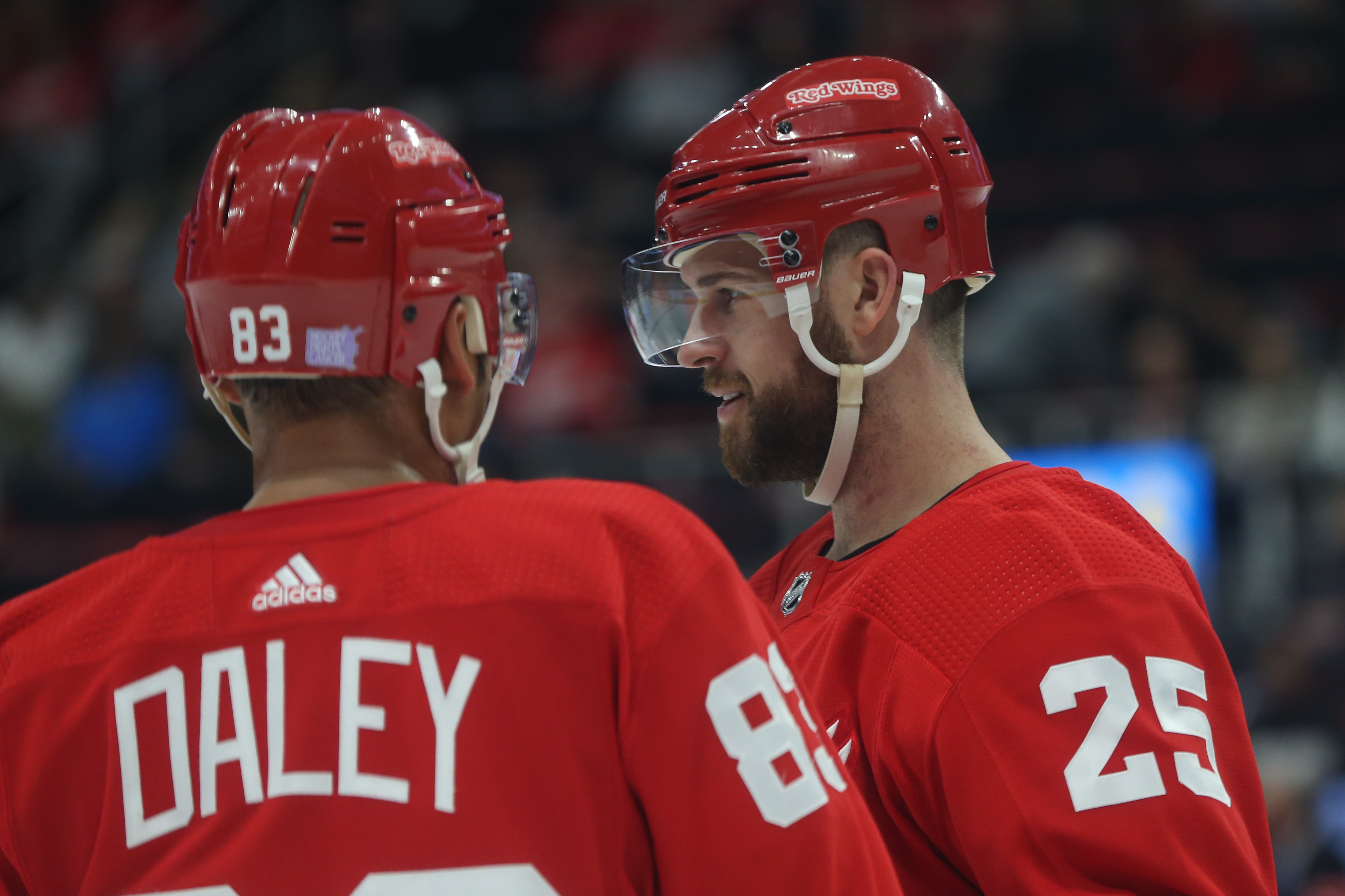 NHL: NOV 13 Coyotes at Red Wings