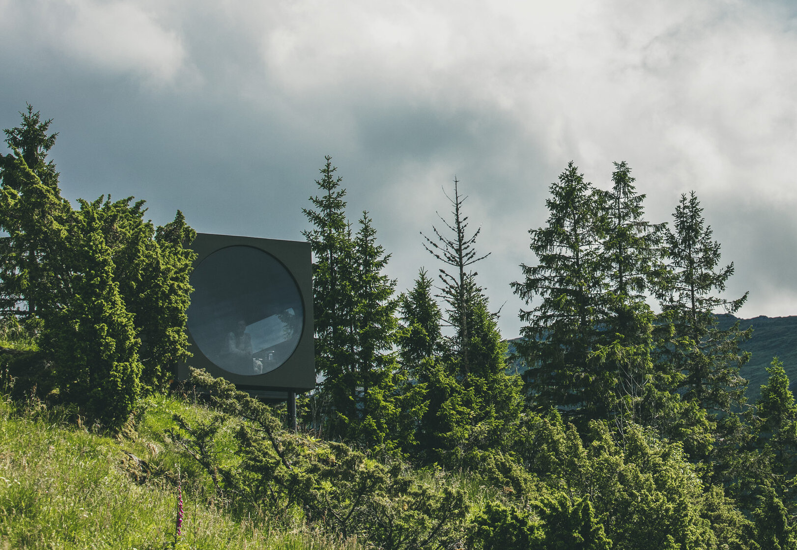 A black box with a round window sits among trees.