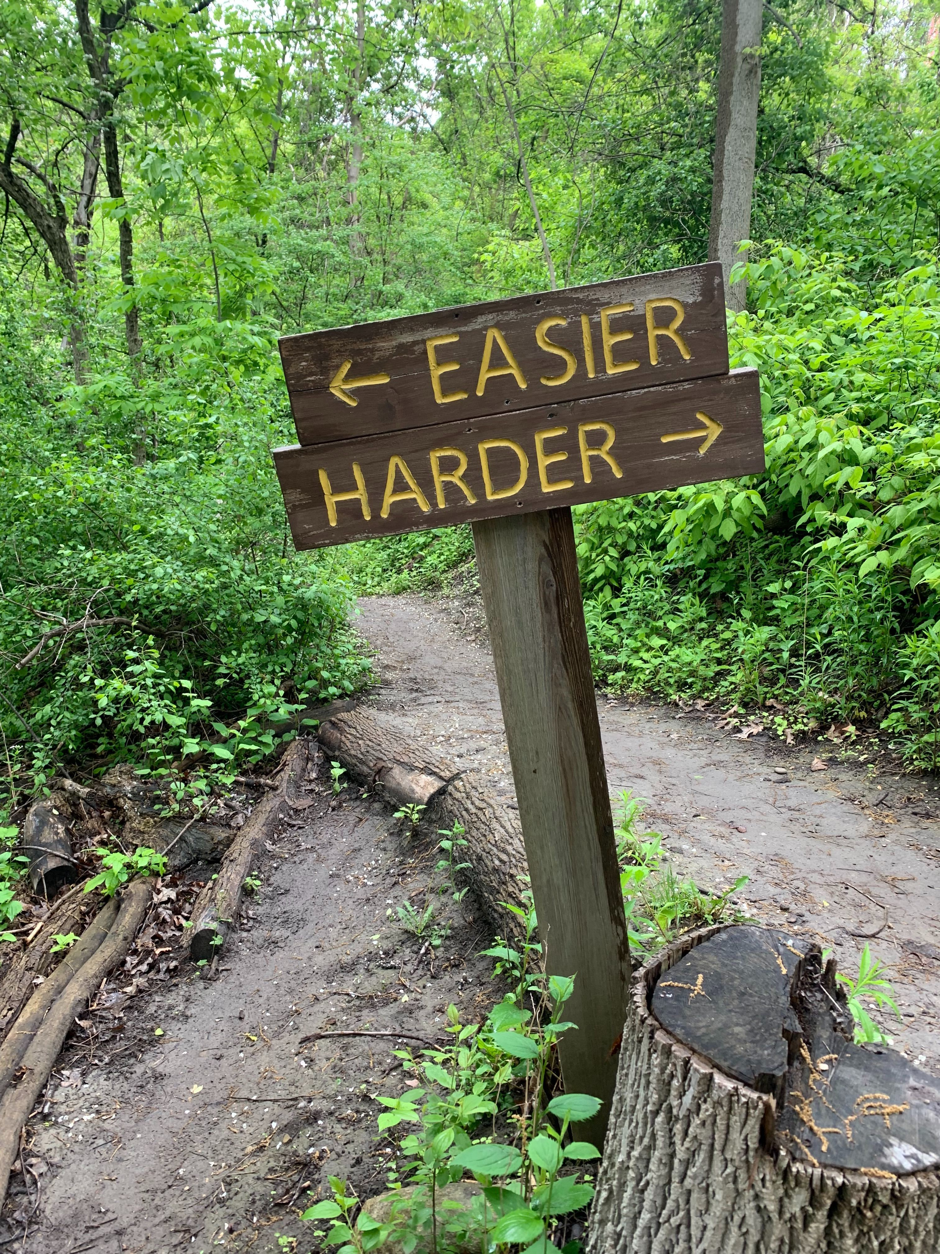 """A sign that points """"Easier"""" to the left and """"Harder"""" to the right"""