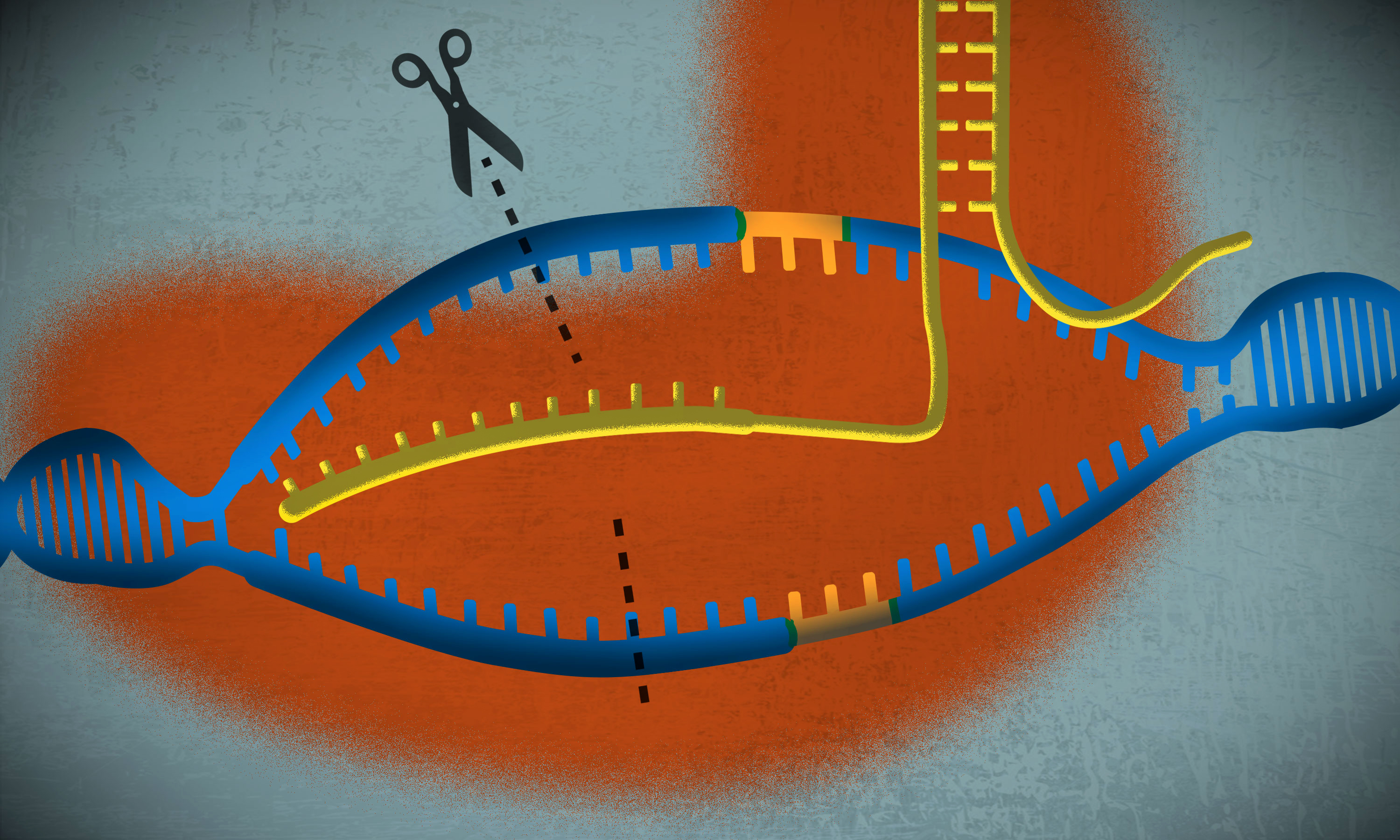 CRISPR's co-developer on the revolutionary gene-editing technology's past — and its future