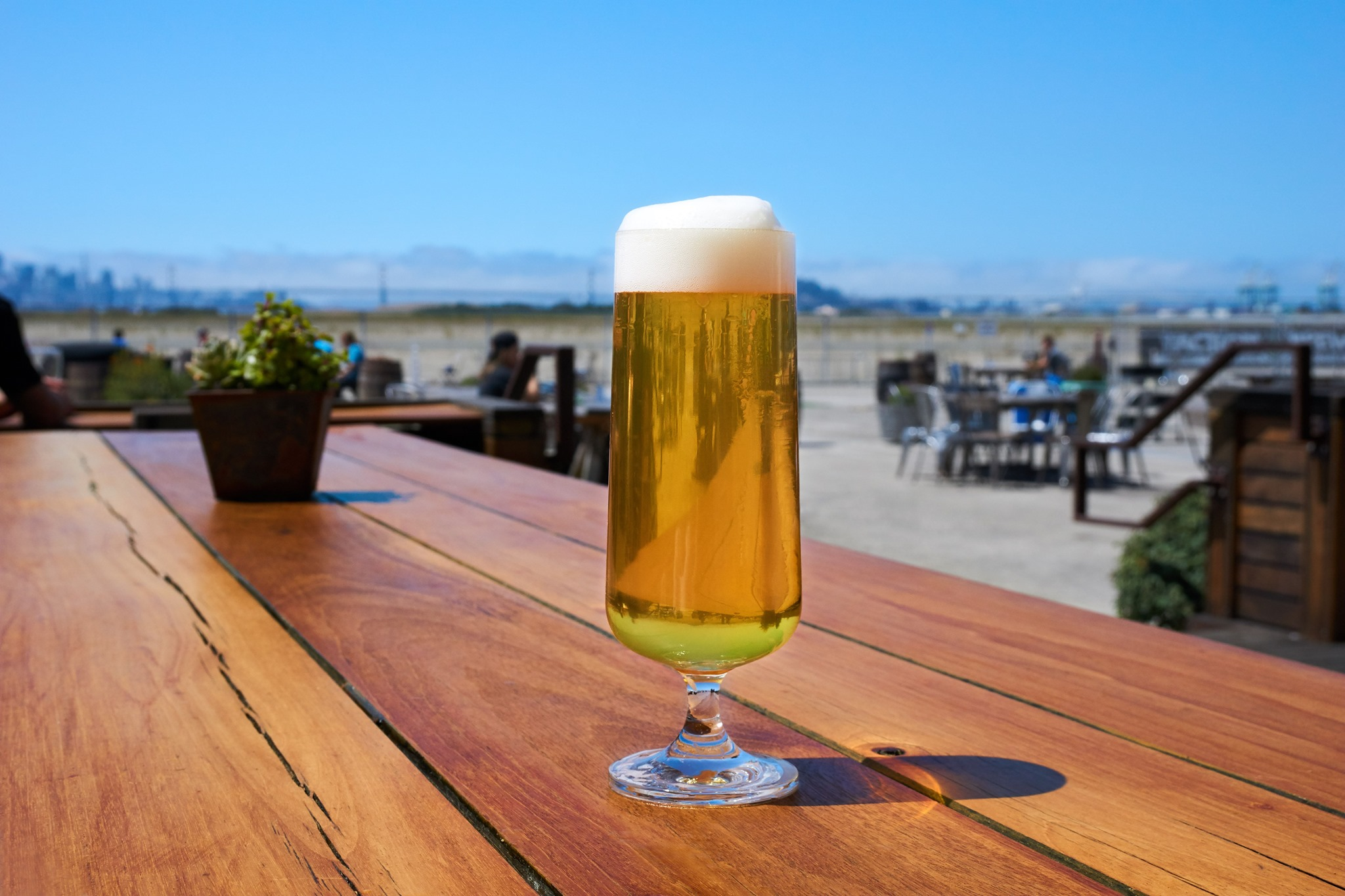 A Faction Brewing pilsner, show here with the brewery's view of the Alameda waterfront