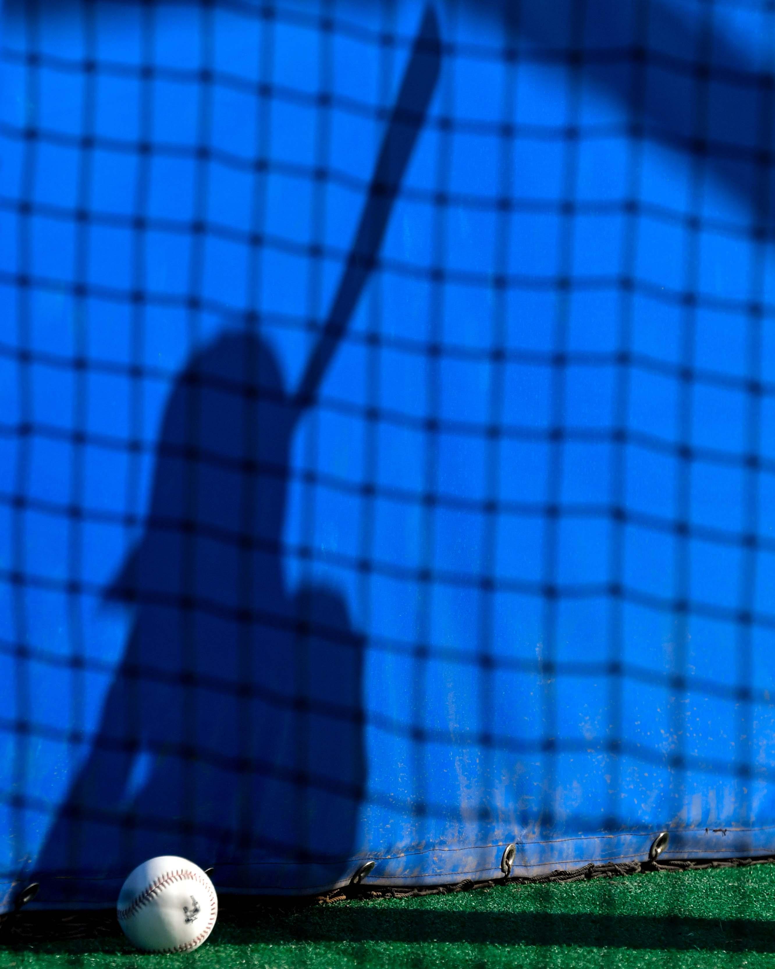 MLB: Toronto Blue Jays-Workouts