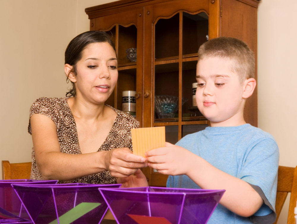 Woman conducting applied behavior analysis therapy with a boy. Parents of children with autism want such therapists to work in the classroom.