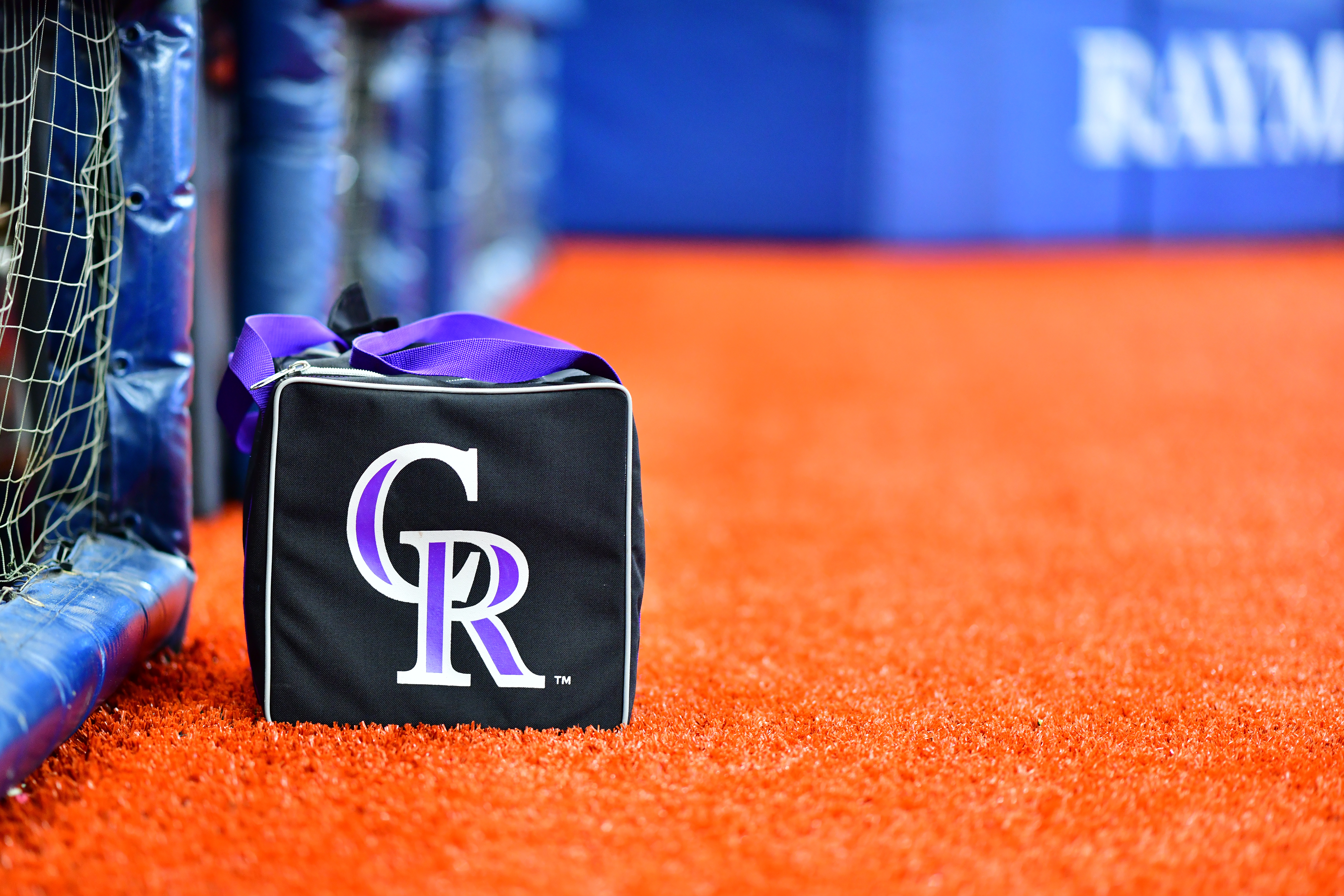 Colorado Rockies v Tampa Bay Rays