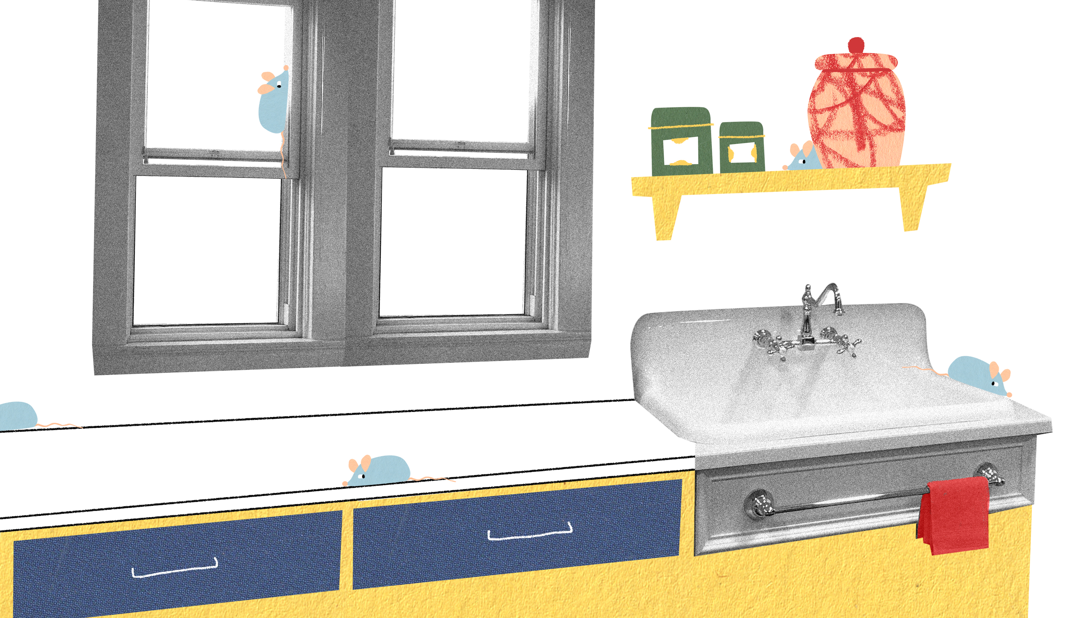 A clean and clear kitchen counter with a sink to the right. There's a small shelf above the sink with various jars. A rag hangs on a drawer handle below the sink. Illustration.