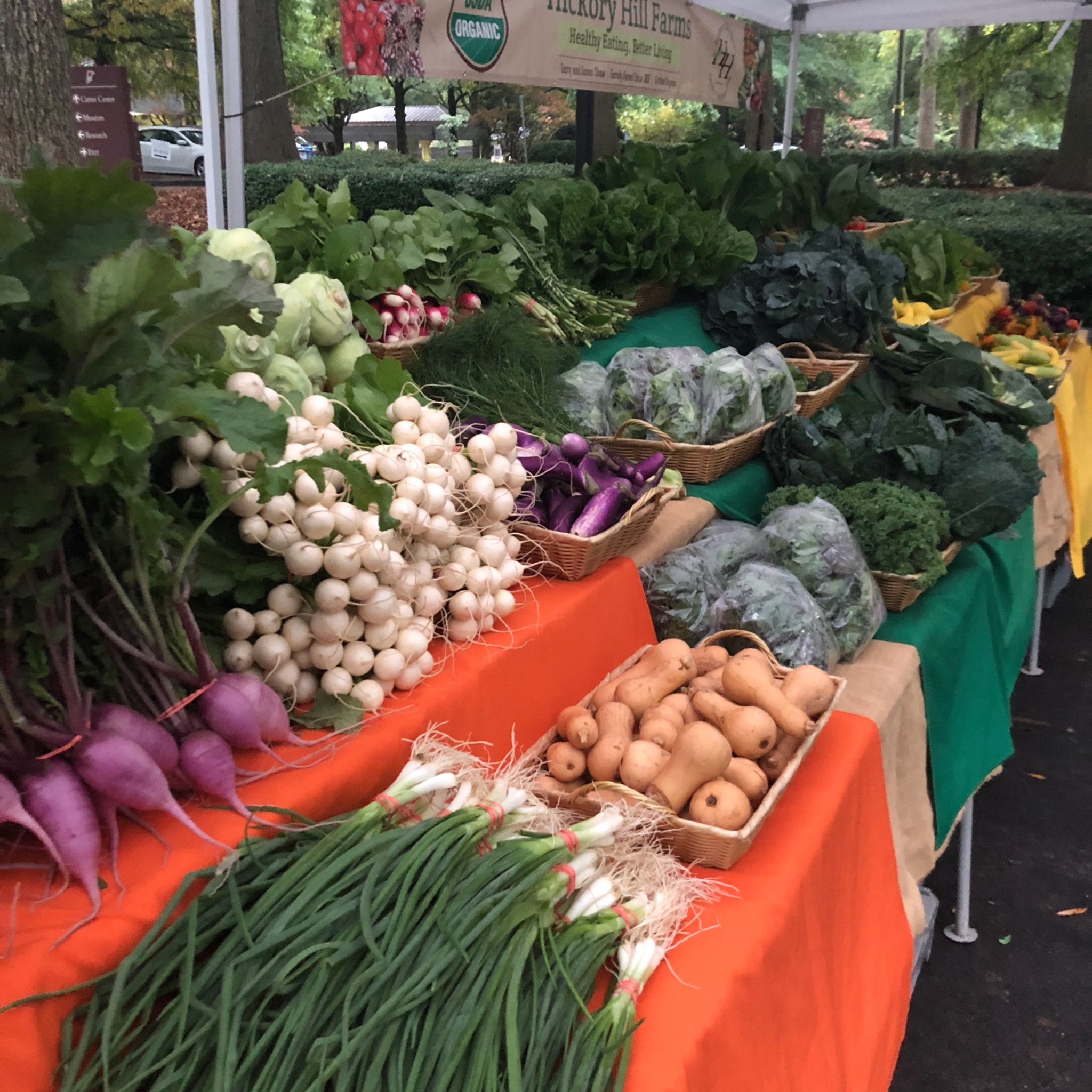 Vegetables from Hickory Hill Farms at Freedom Farmers Market
