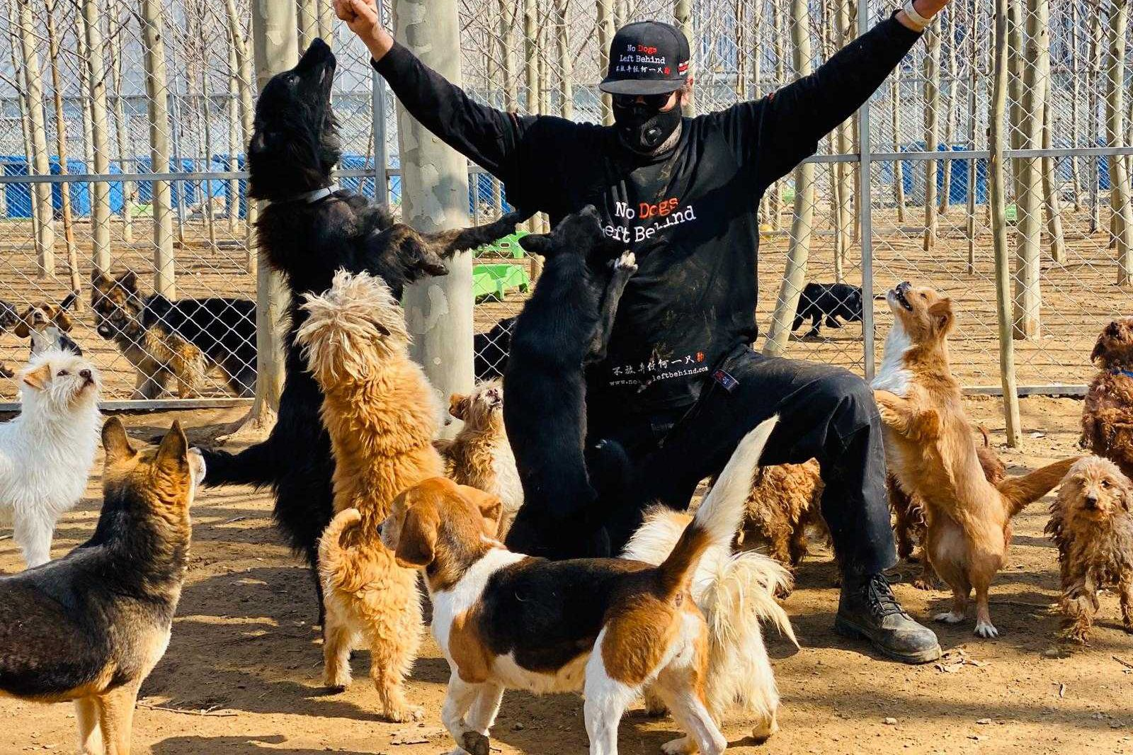 Jeffrey Beri, founder of No Dogs Left Behind, at his Beijing sanctuary for rescued K9s.