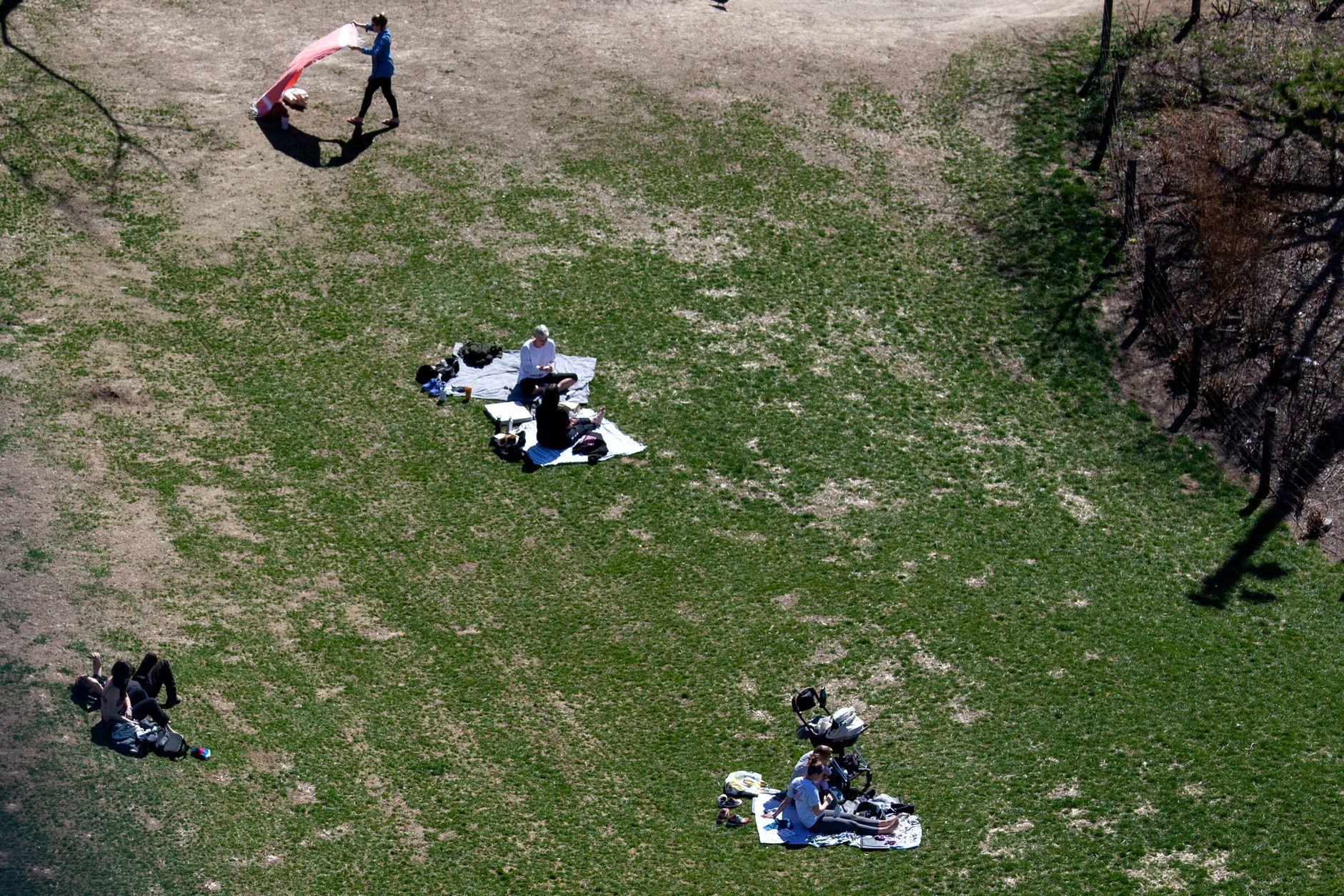 People practice social distancing in DUMBO's Main Street Park during the coronavirus outbreak.