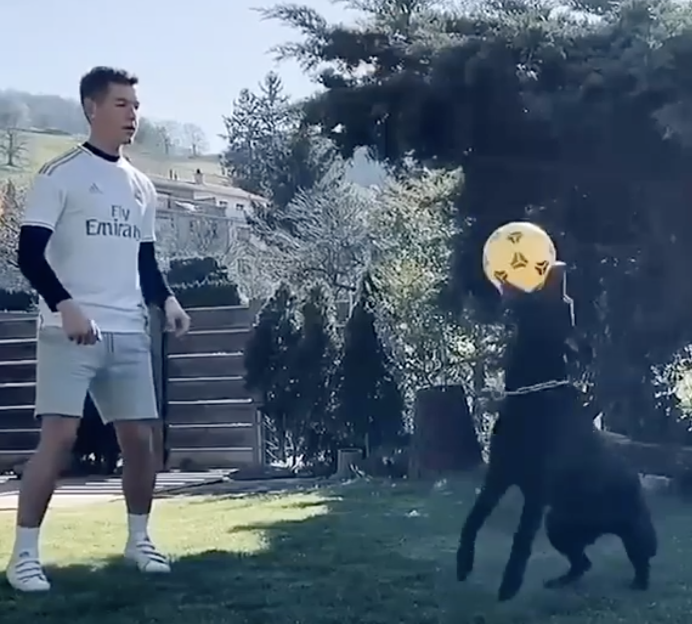 Serbian soccer player Luka Jovic juggling a soccer ball with his dog in his backyard.