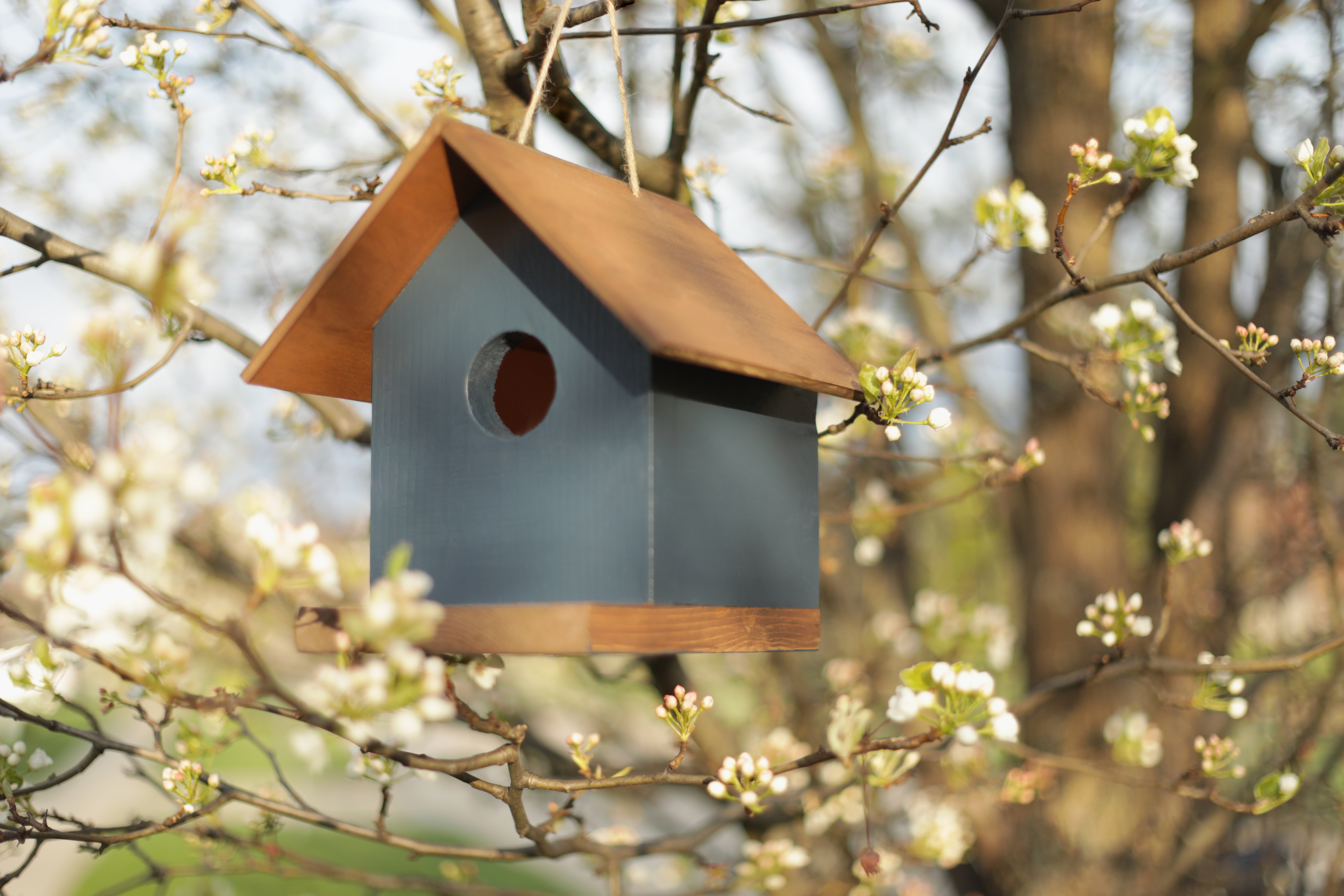 Wooden birdhouse in a tree
