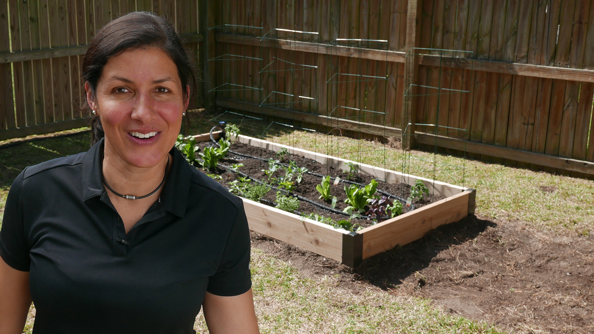 How to build a self-watering vegetable garden