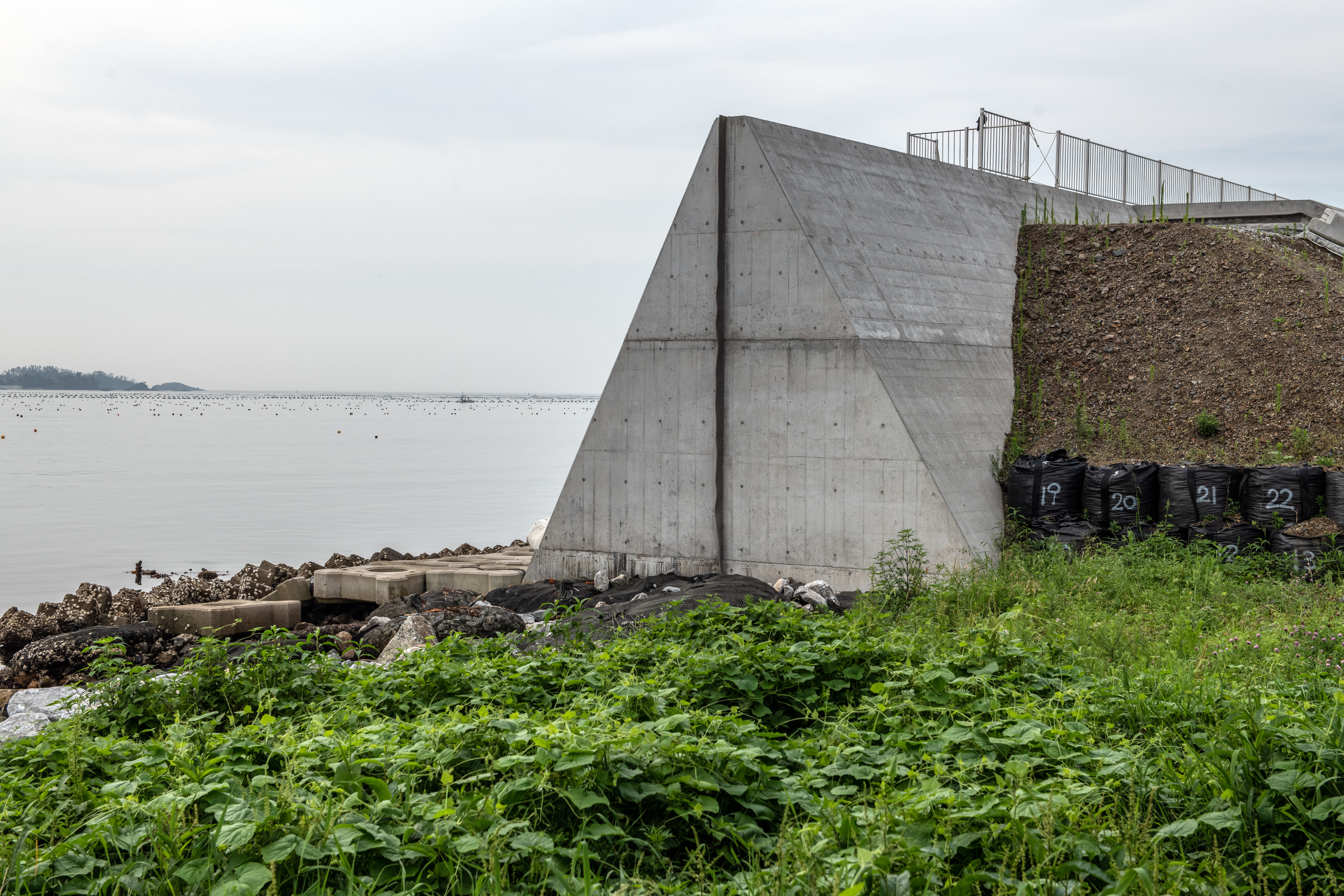 Japan's Wall