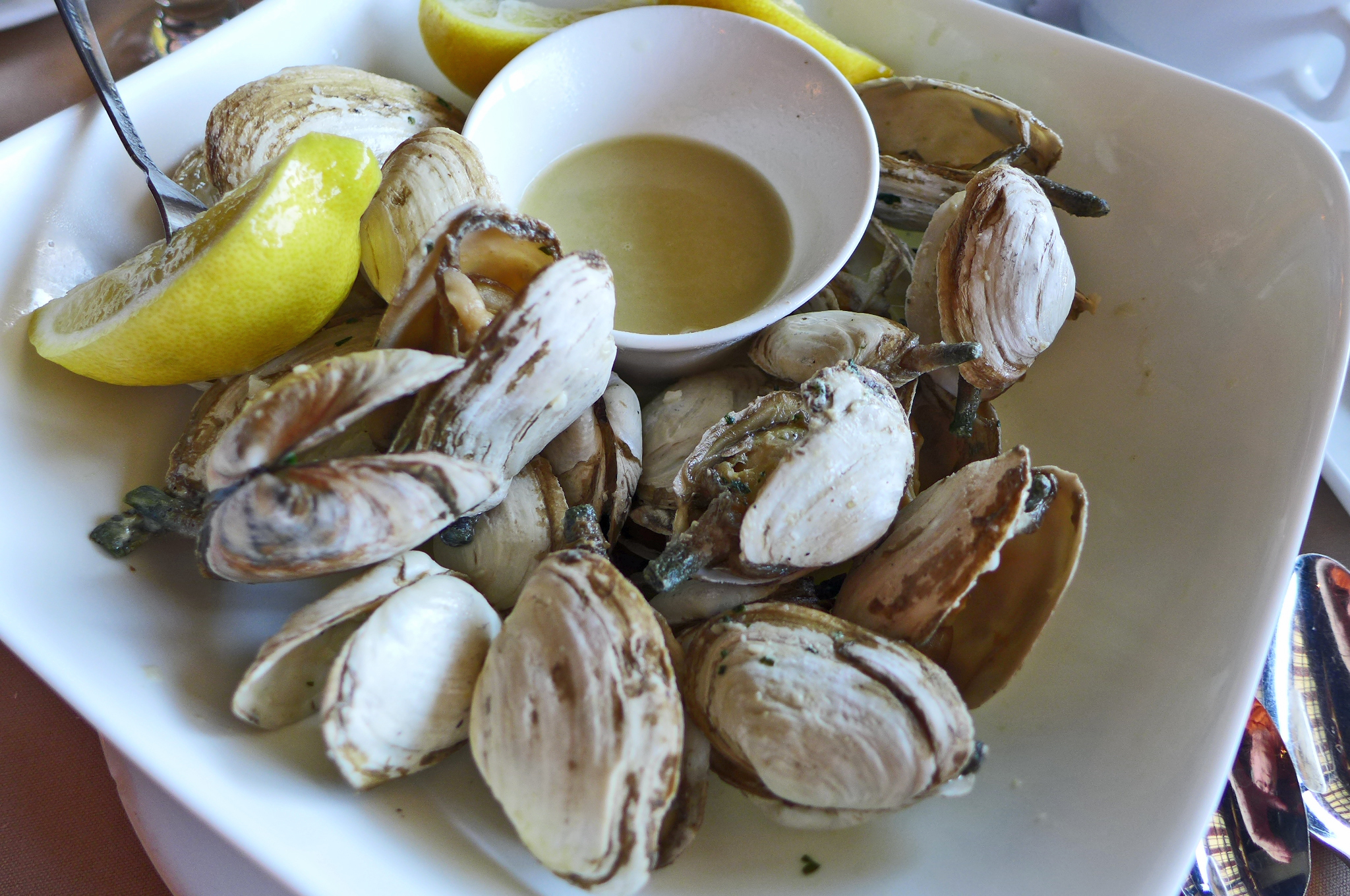Steamed clams in a square bowl with lemon wedges.