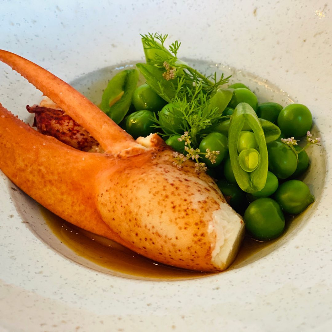 Maine lobster with English peas